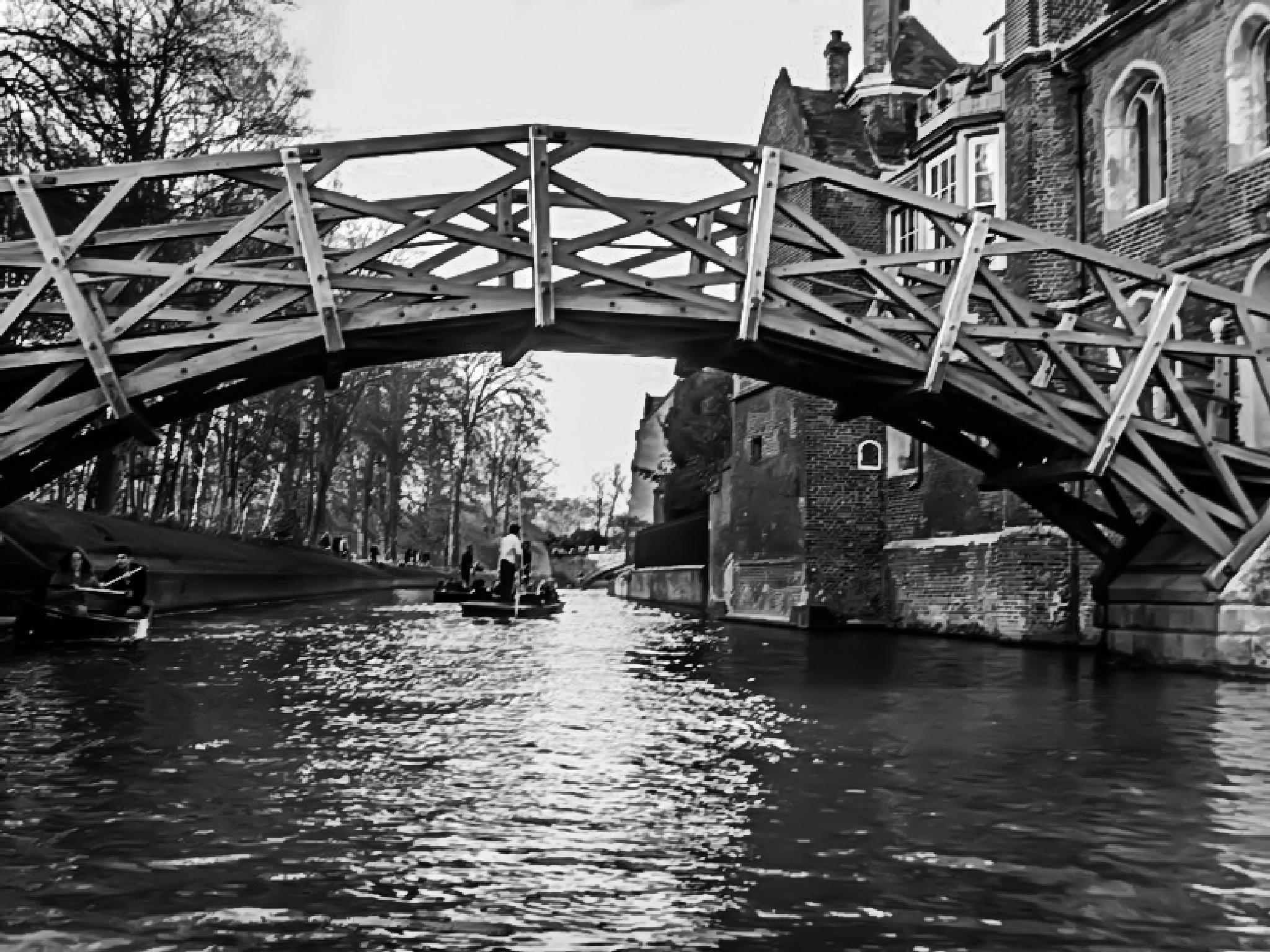 The Bridge by Vance Tan