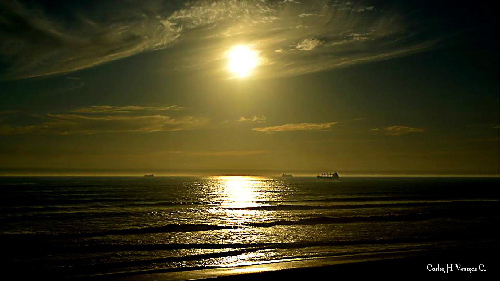 Photo in Sea and Sand #playa de los enemorados #chile #veraneo