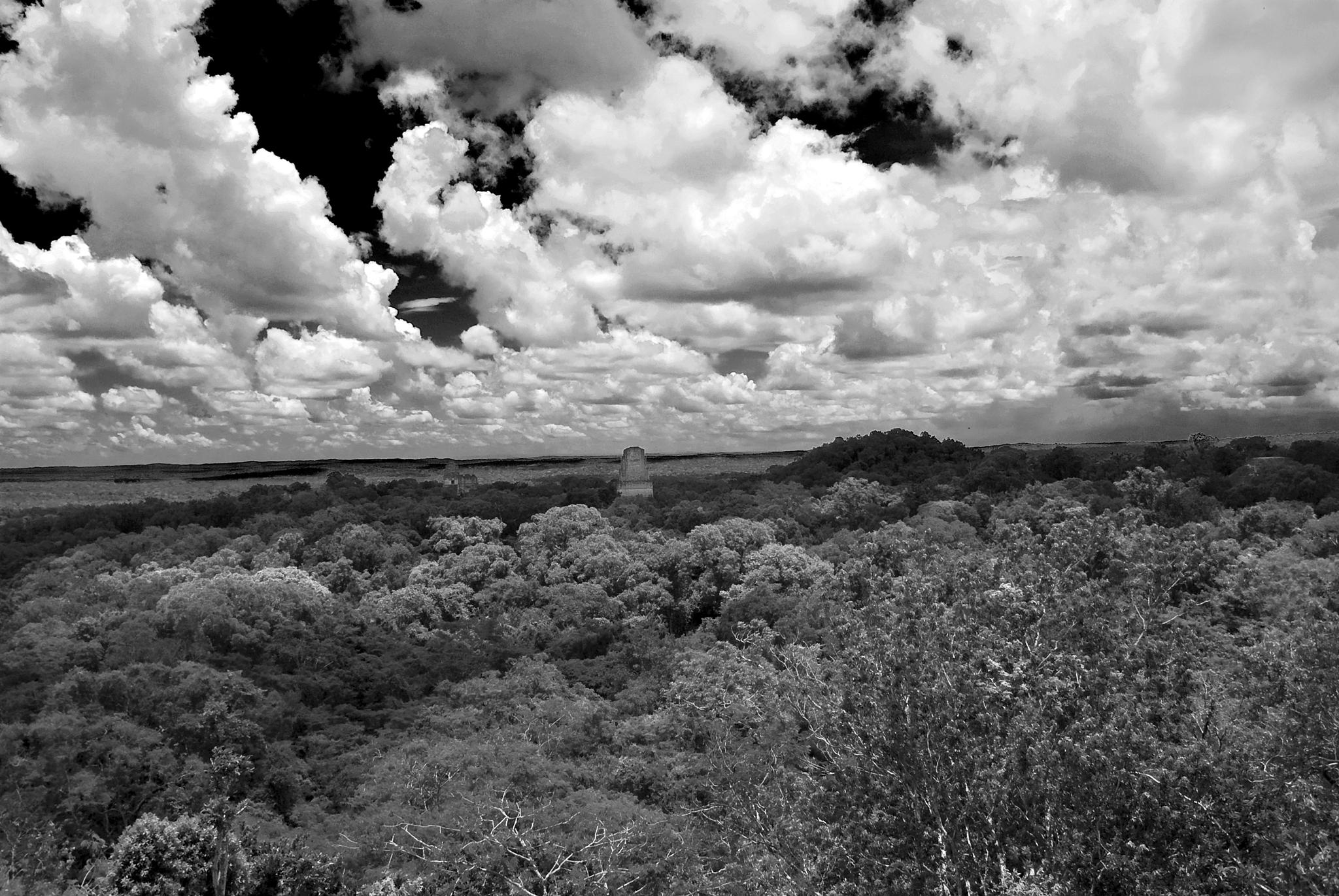 Cloud of Tikal by Marco Mandirola