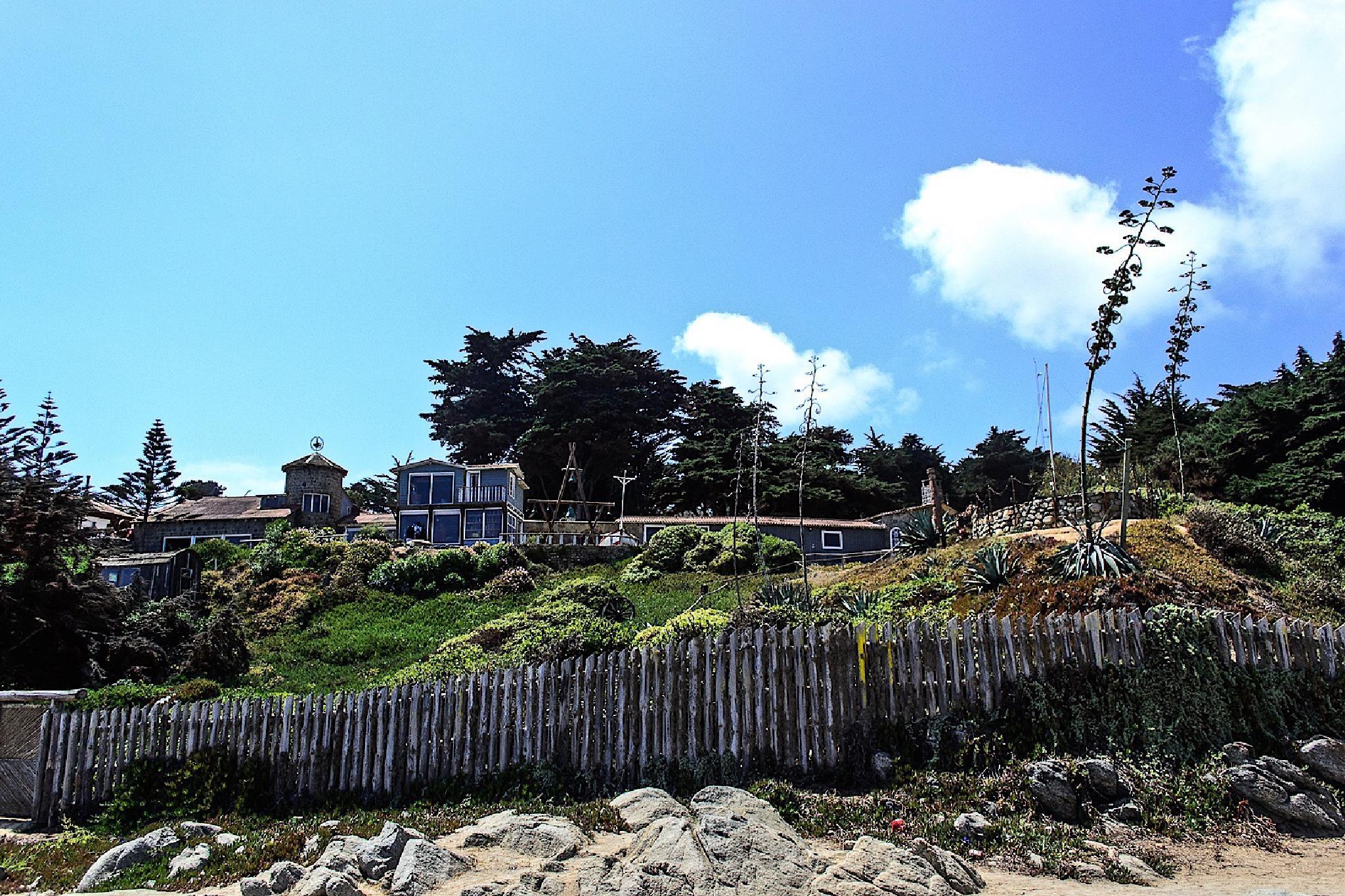 Isla Negra by pablo.maturana2