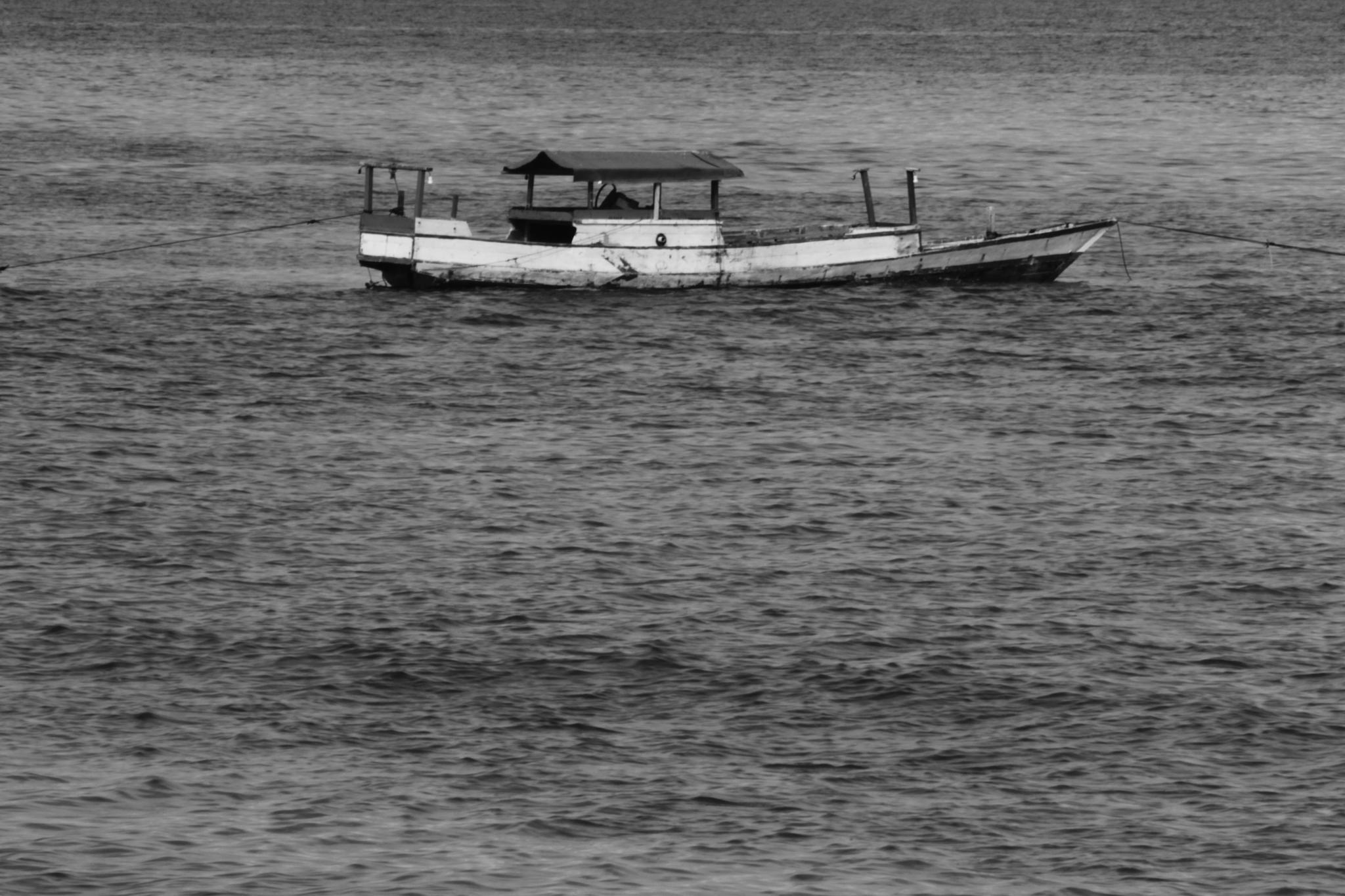 Ship by ElyasFhaidsLena