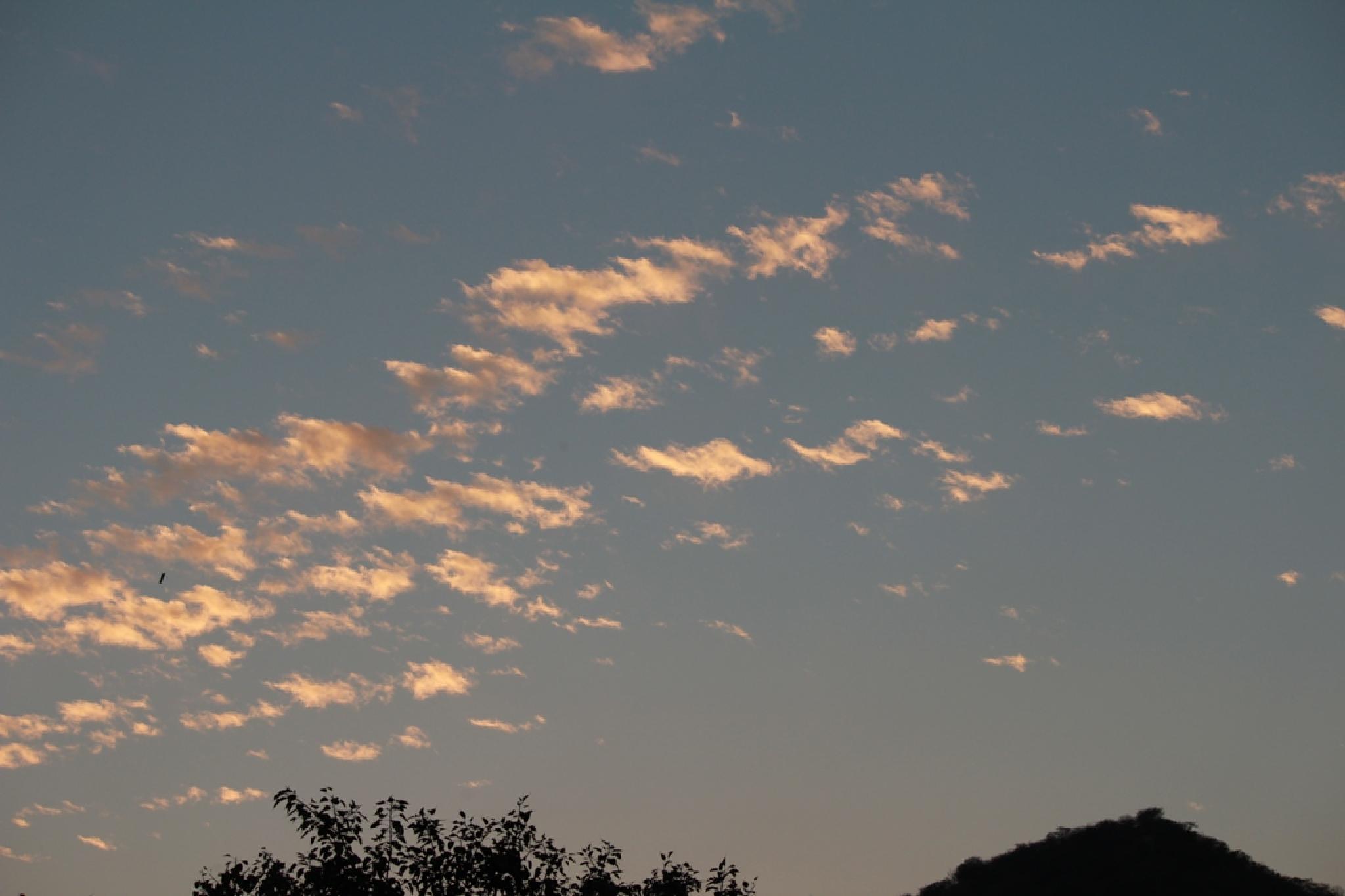 SKY by Piyush R. Sharma