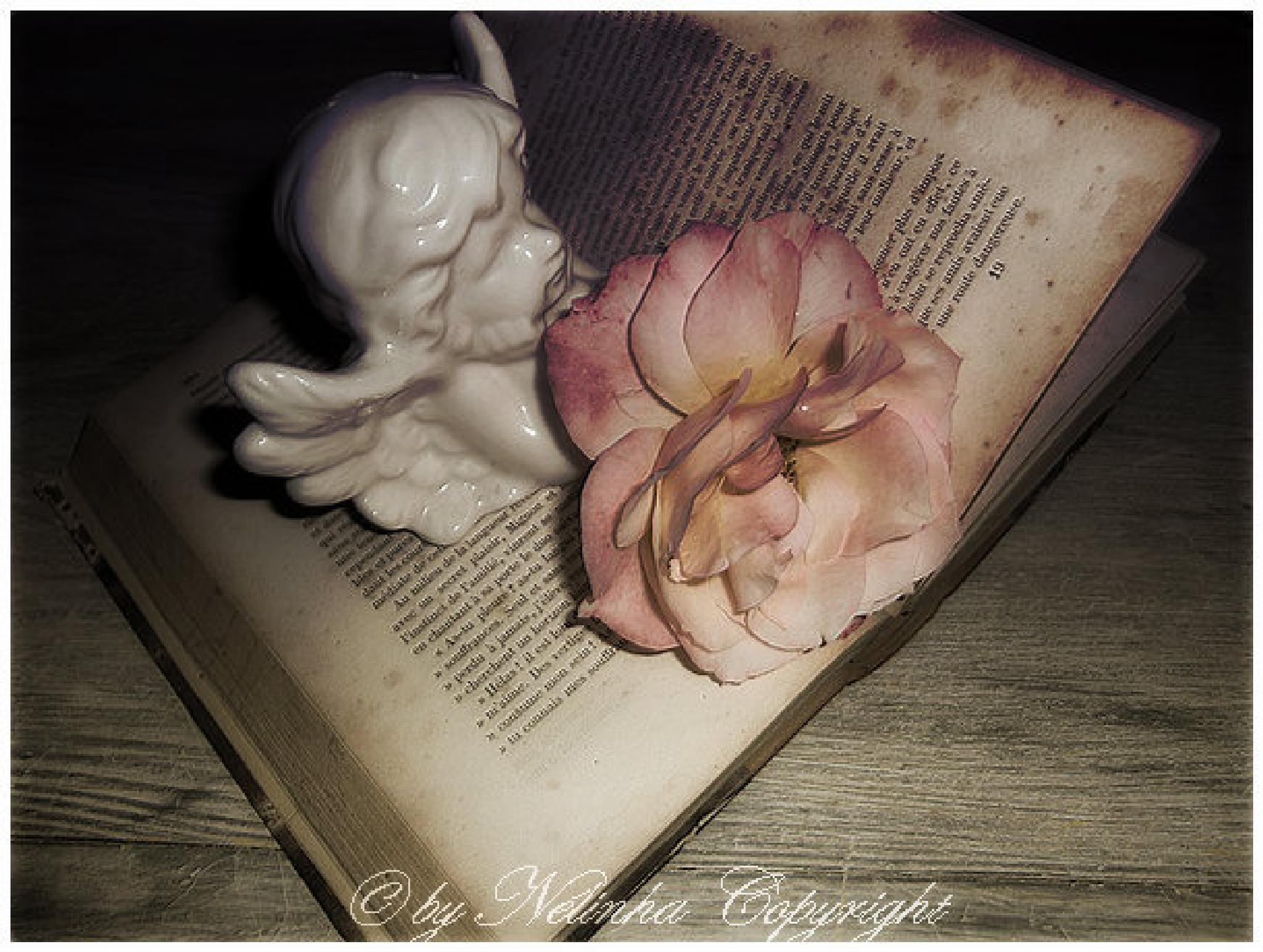 Angel, Rose and book by Nélinha