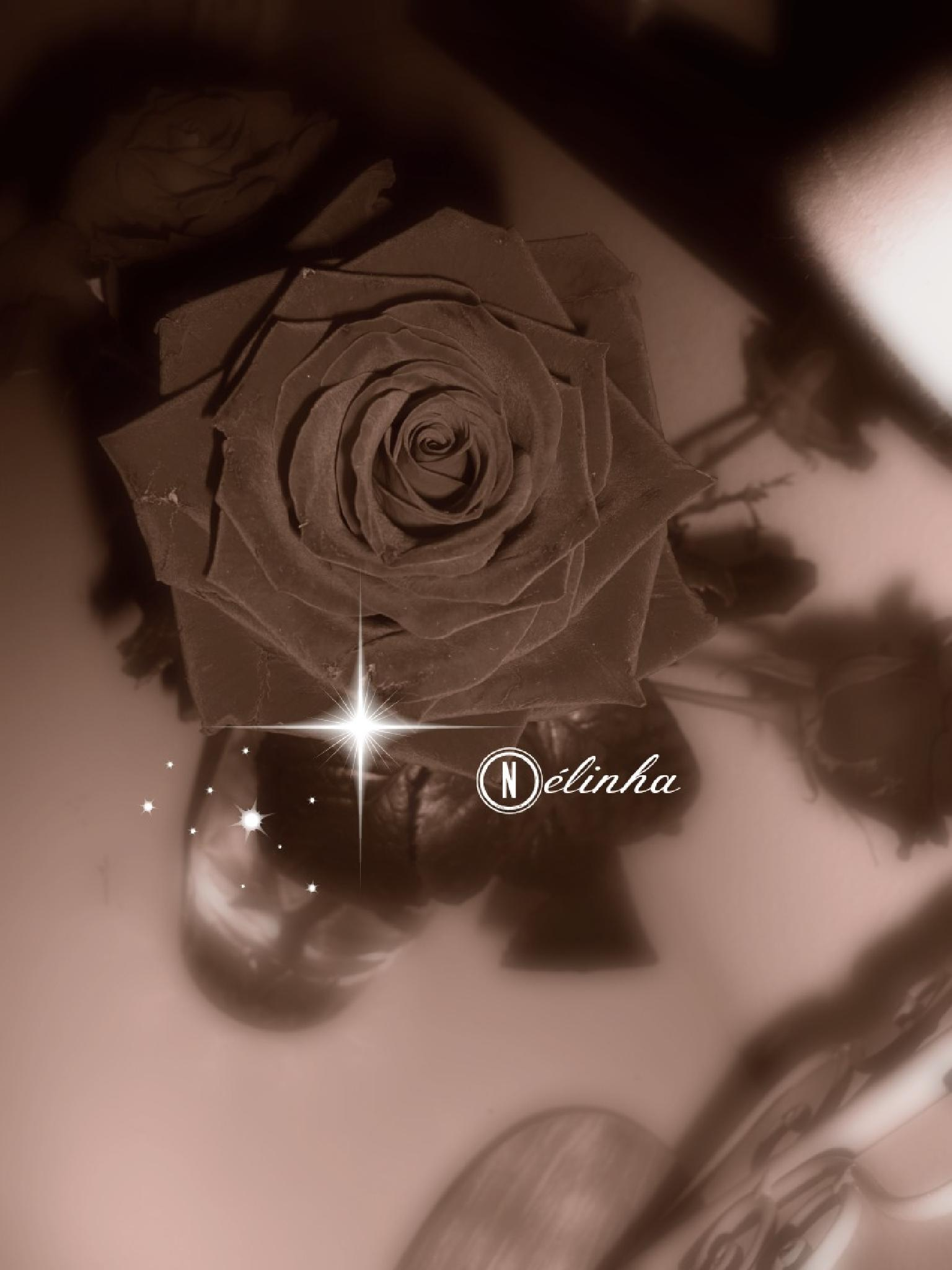 Once upon a Time....Roses by Nélinha
