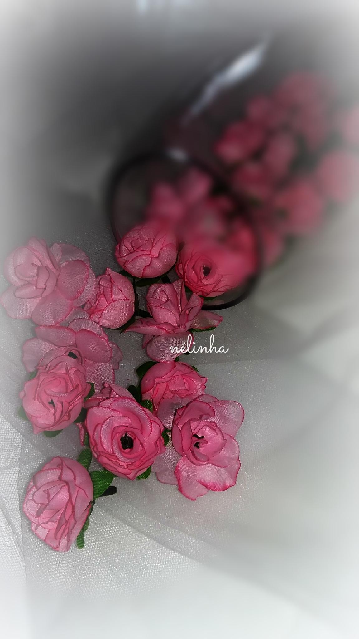 Un regard posé sur une fleur, s'est une journée remplie de Bonheur by Nélinha