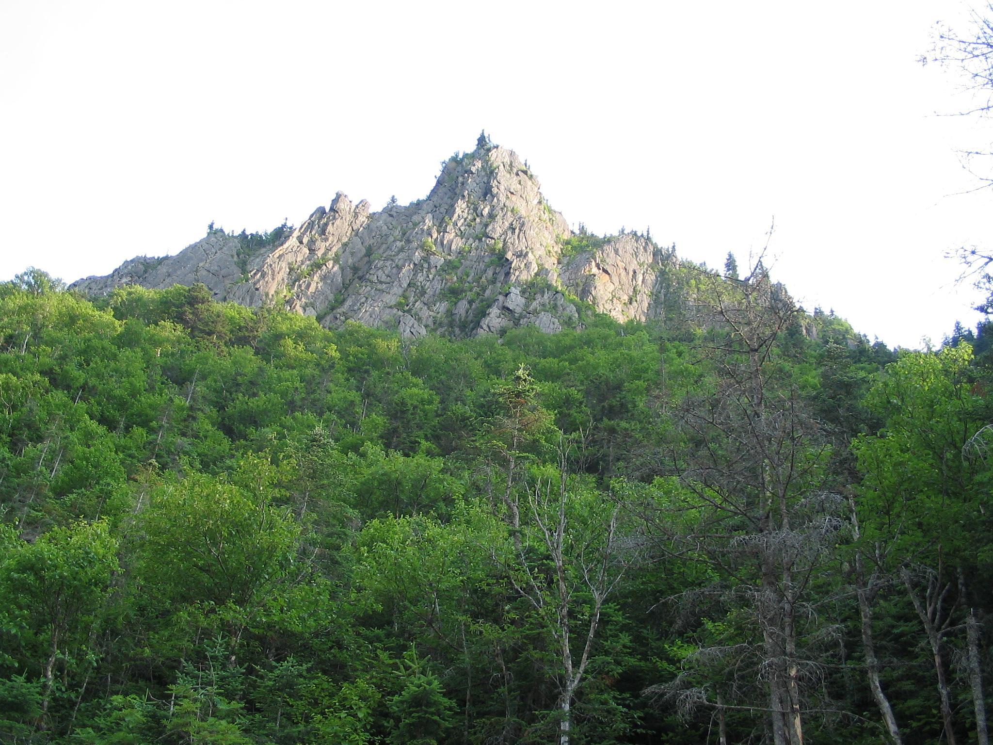 hiking by pauline