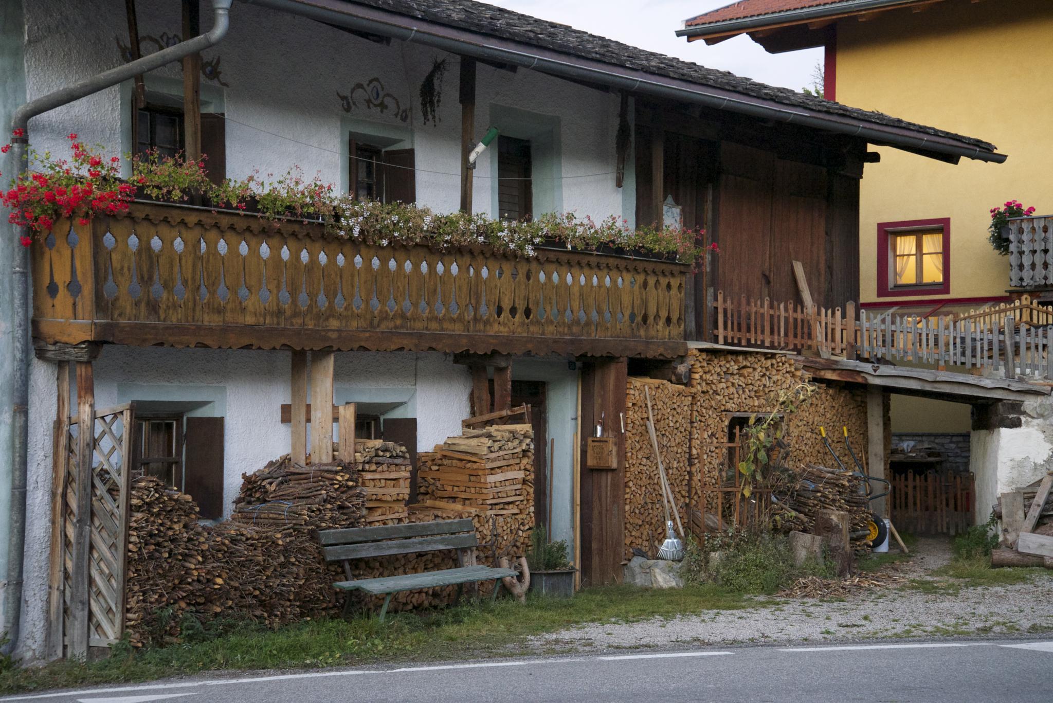 Raccolta di legna by Umberto Fontana
