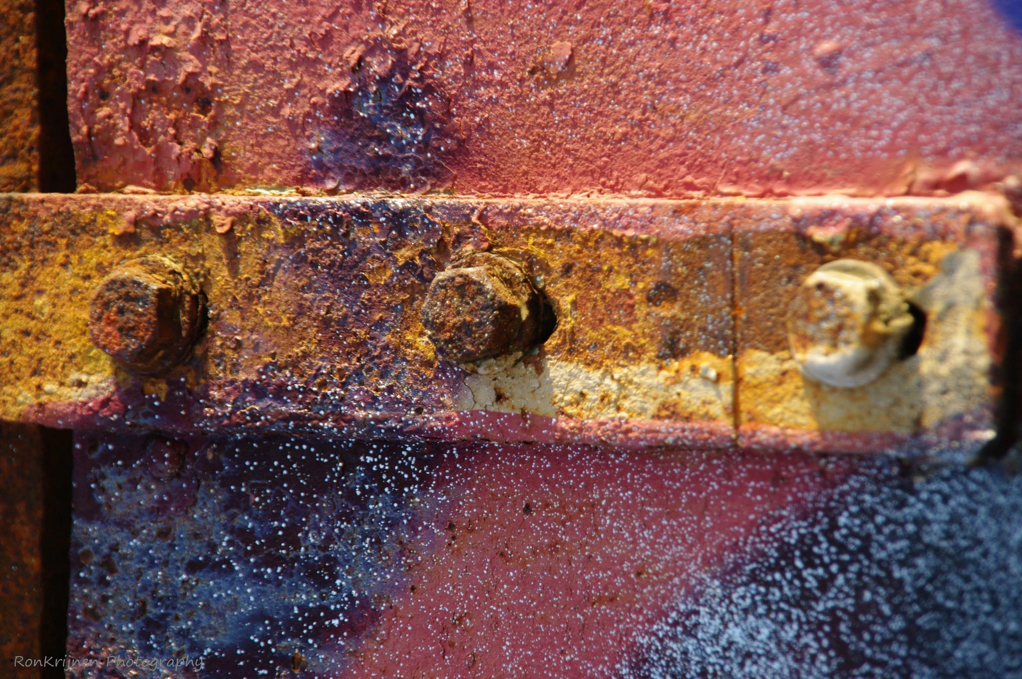 close up 5 by ron.krijnen