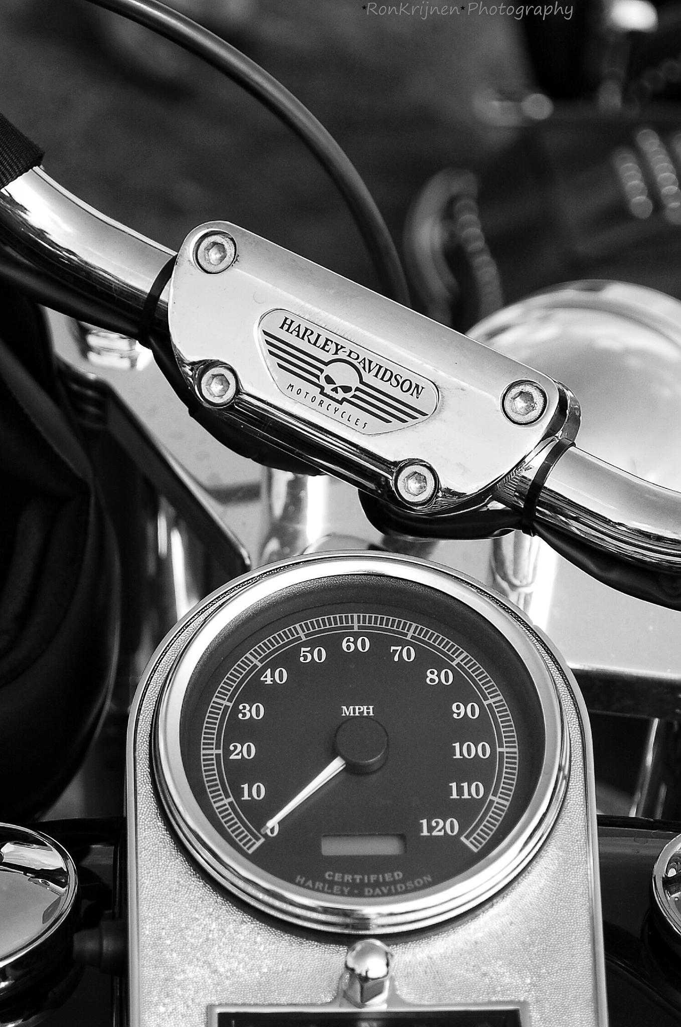 Harley Davidson by ron.krijnen