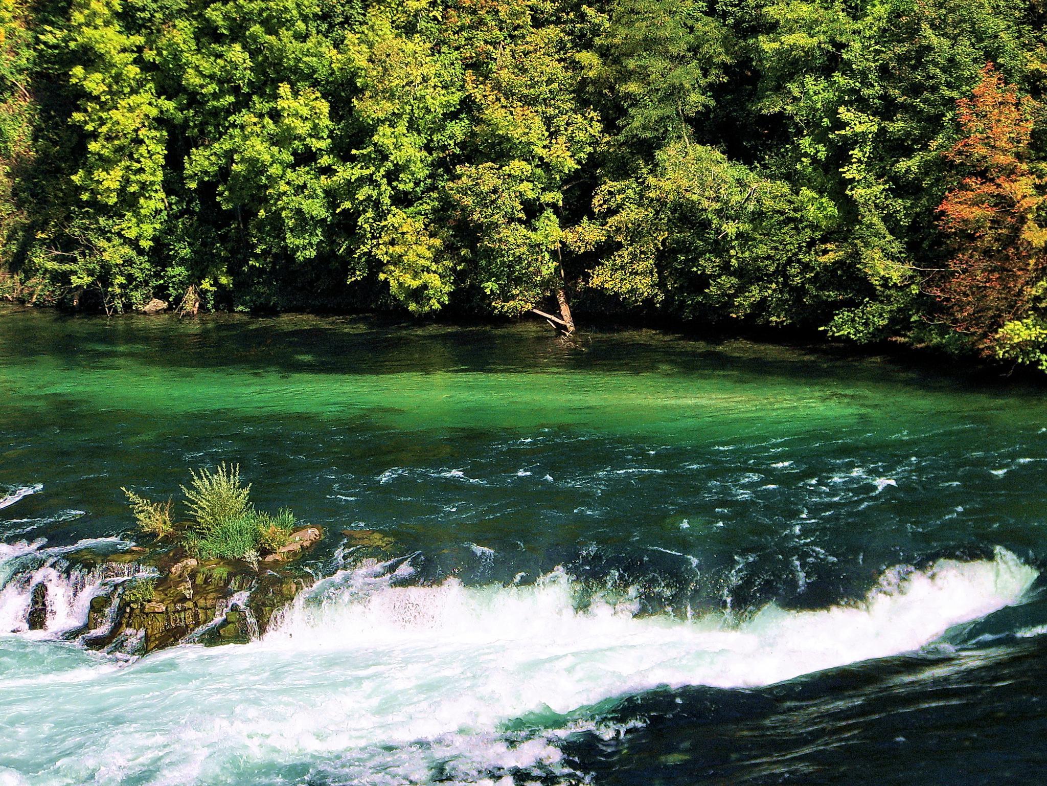 Rhine falls Switzerland by BernardaBizjak