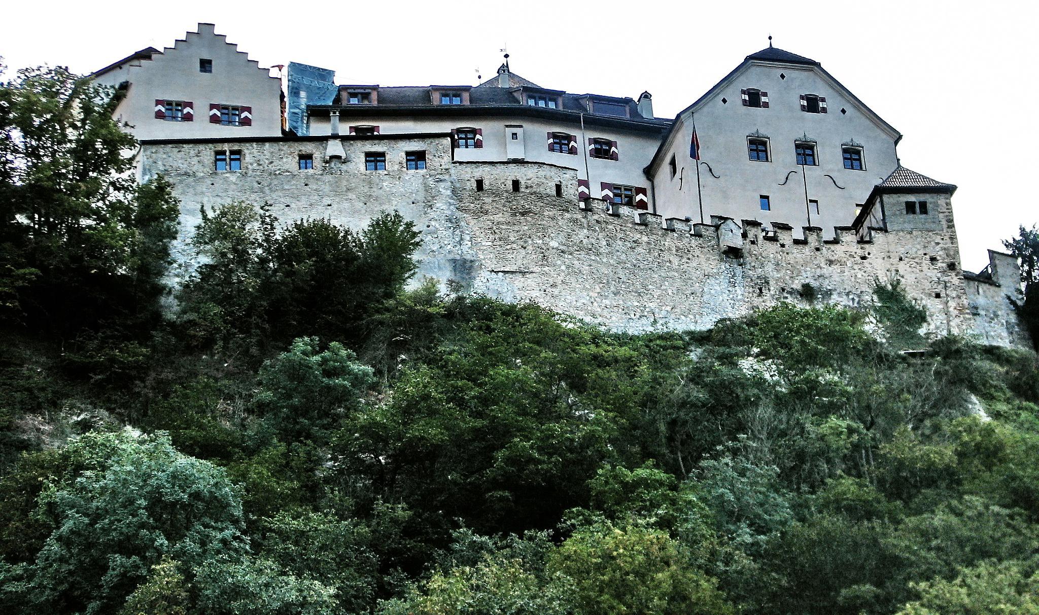 Vaduz castle, Liechtenstein by BernardaBizjak