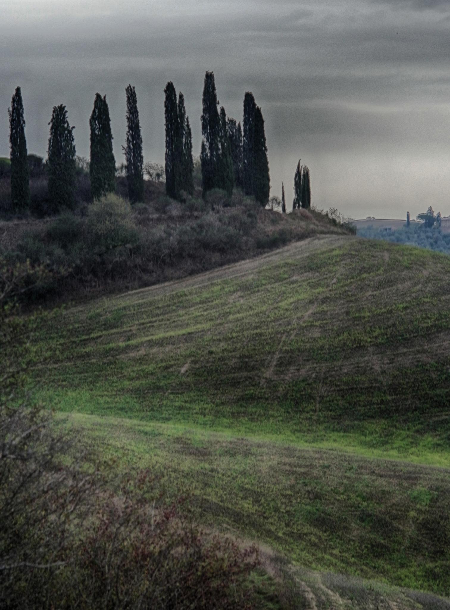 Toscana by leicajerome