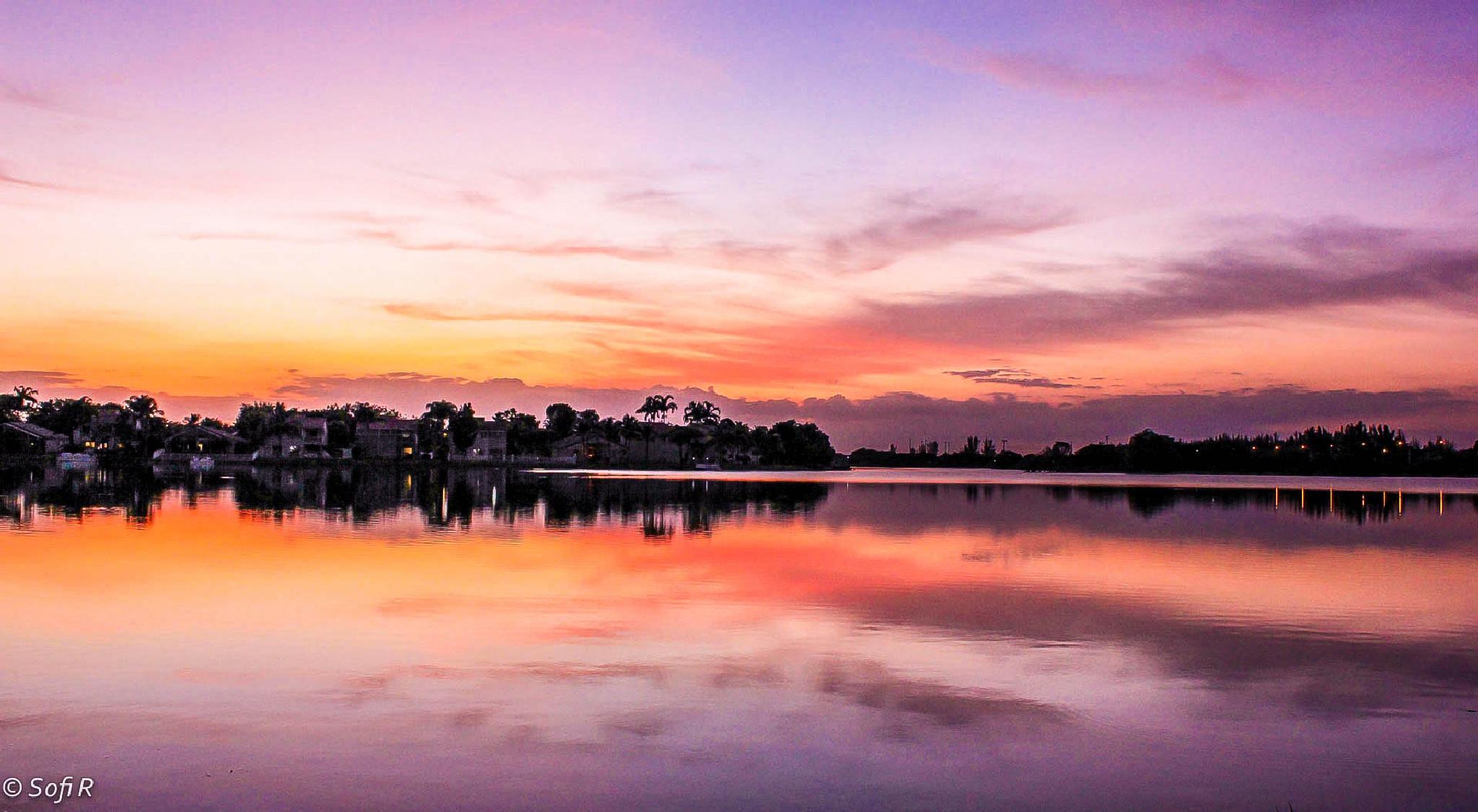 feeling the last light by Sofi Rivera