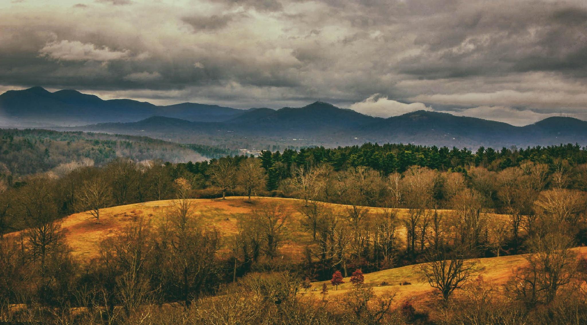 | Asheville | by Sofi Rivera