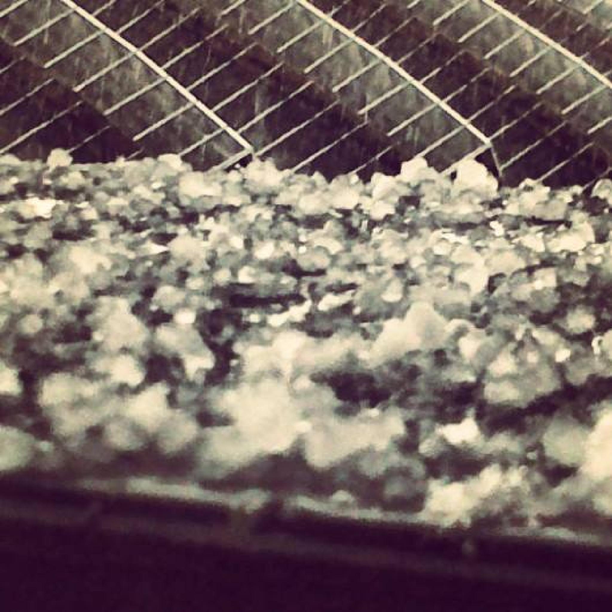 Hail rain by Natys