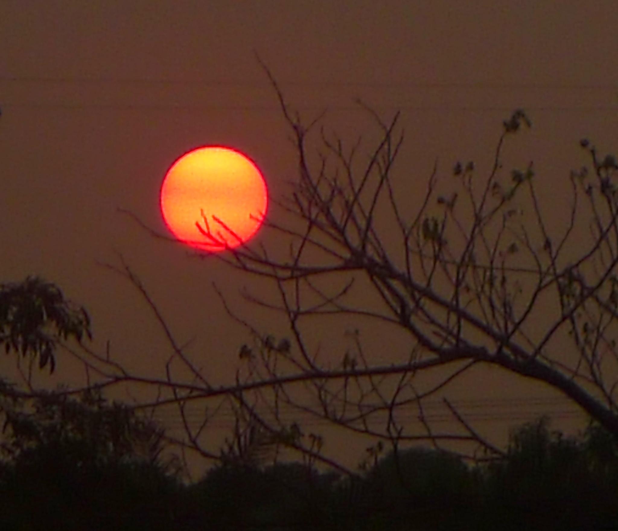 SUN AT THE EQUATOR by Adib Noh