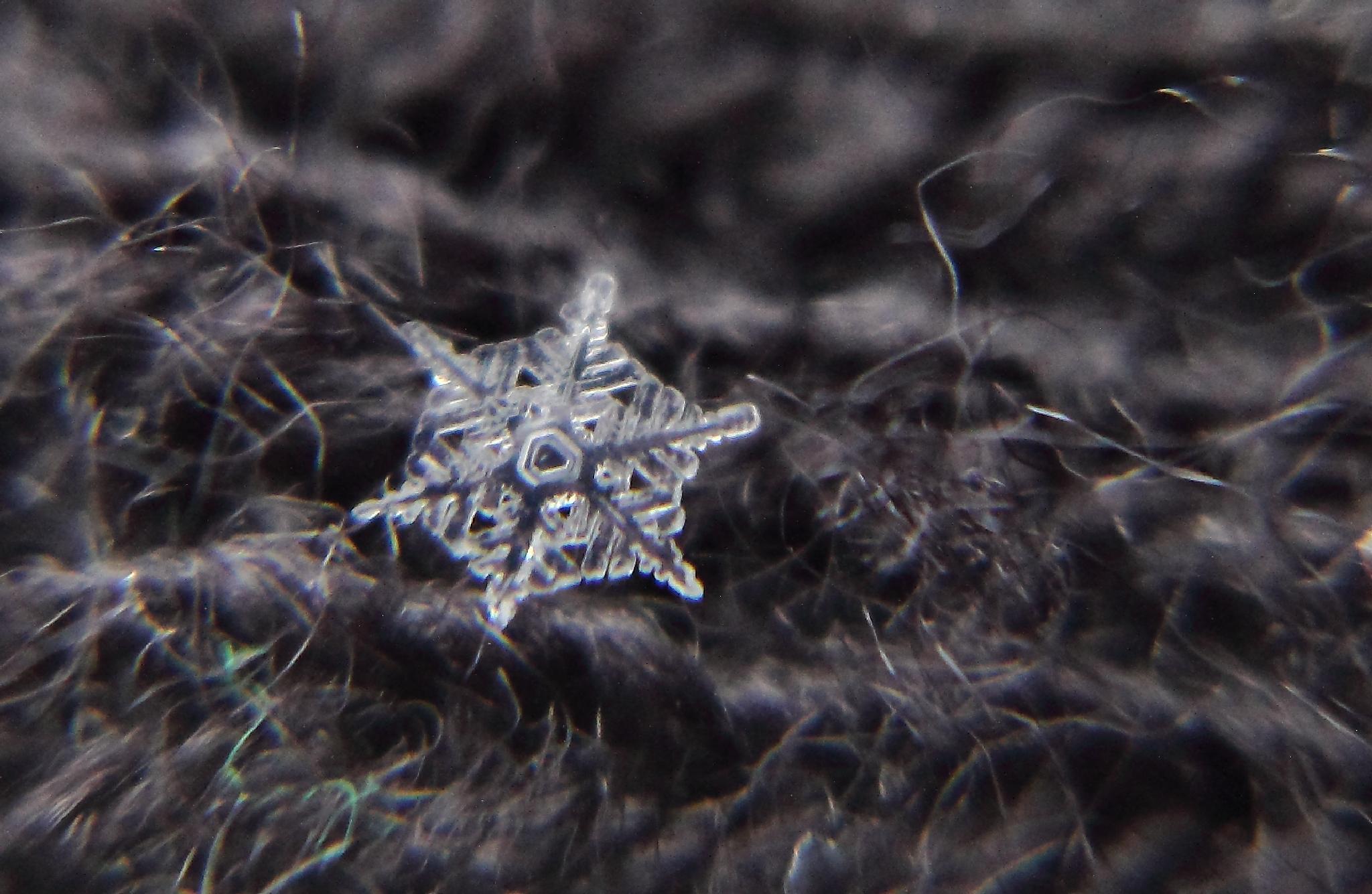 Snowflake 6 by michelle.vinnacombe