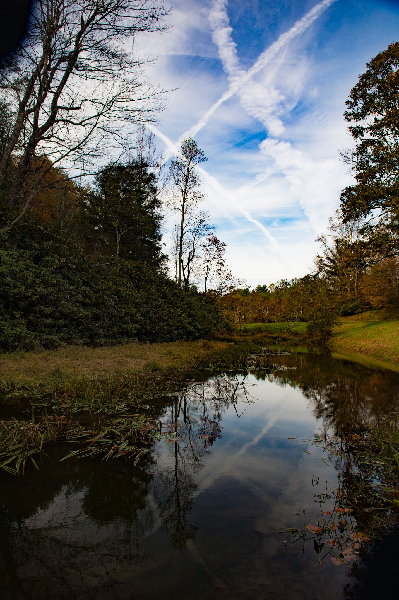 Mill Pond by mbmiller2