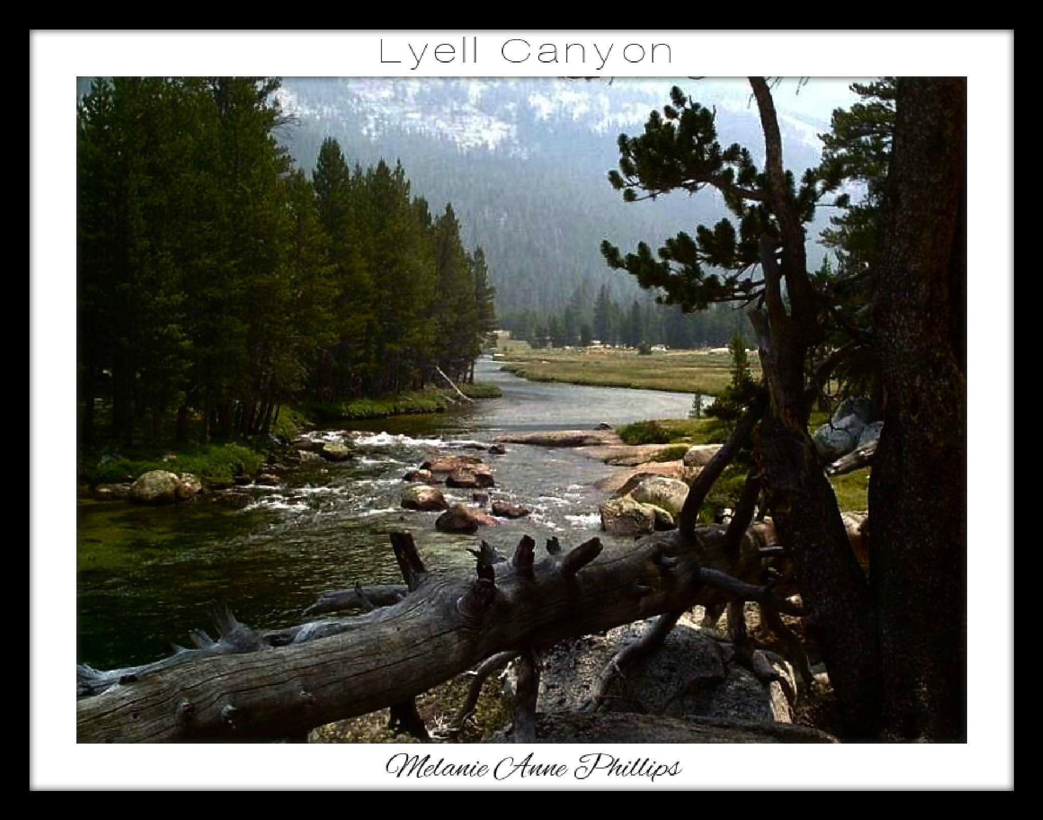 Lyell Canyon by MelanieAnnePhillips