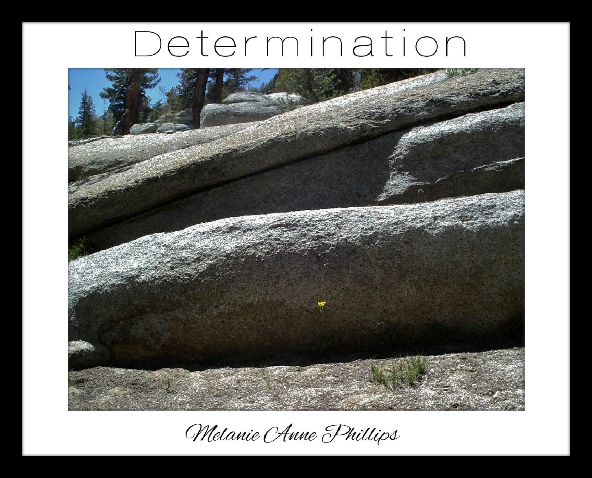 Determination by MelanieAnnePhillips