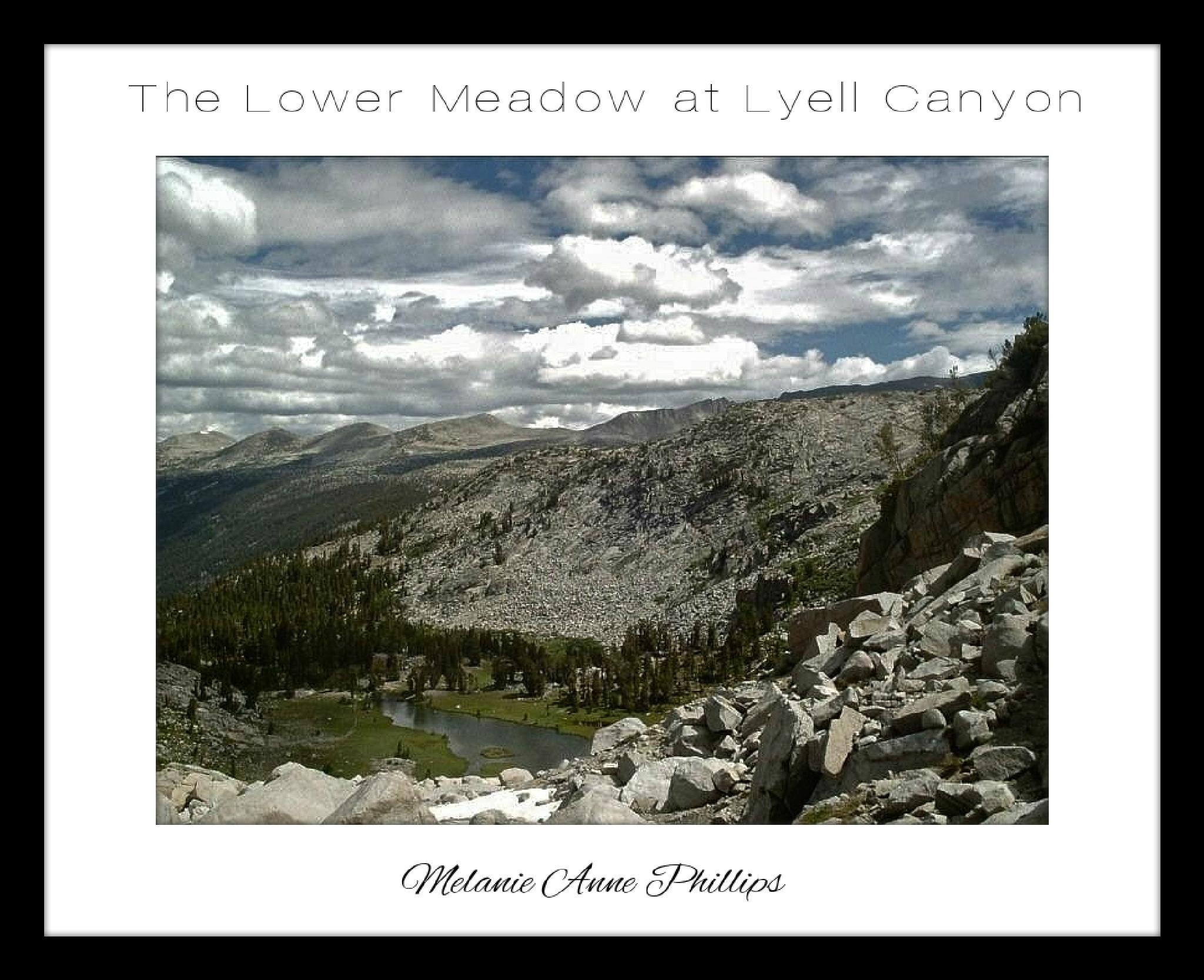 The Lower Meadow at Lyell Canyon by MelanieAnnePhillips