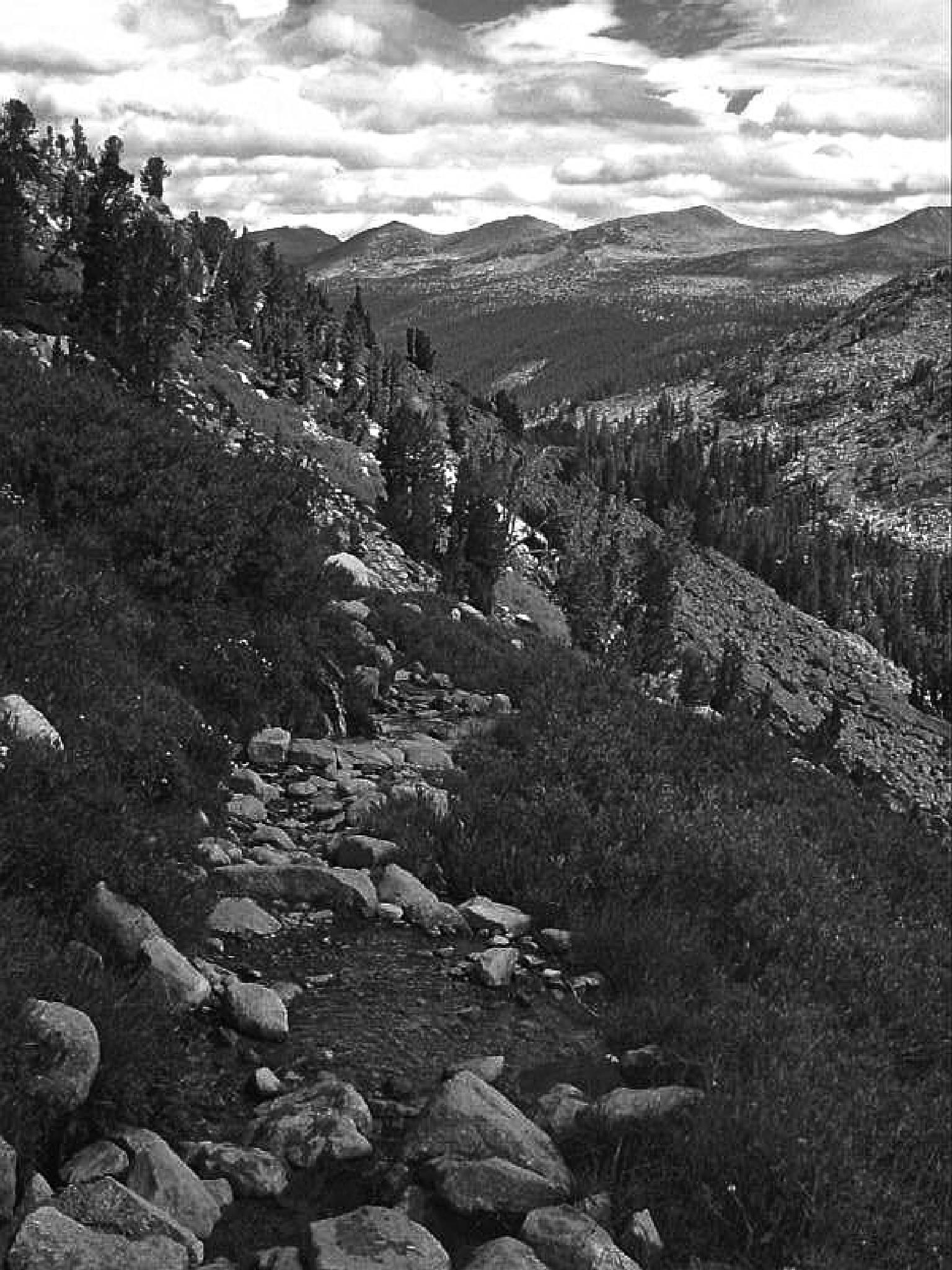 The John Muir Trail in Lyell Canyon, Yosemite by MelanieAnnePhillips