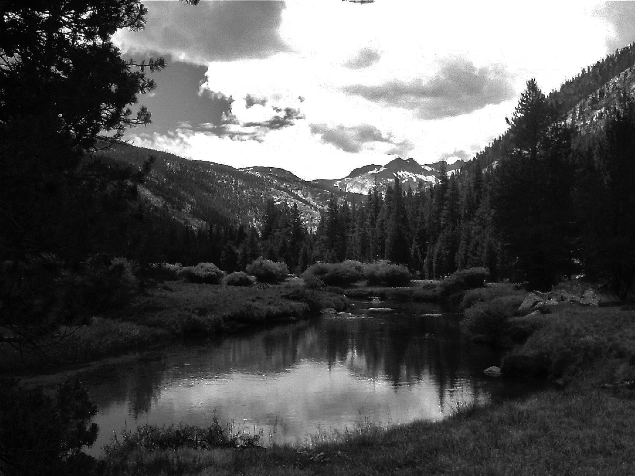 A Pond in Yosemite by MelanieAnnePhillips