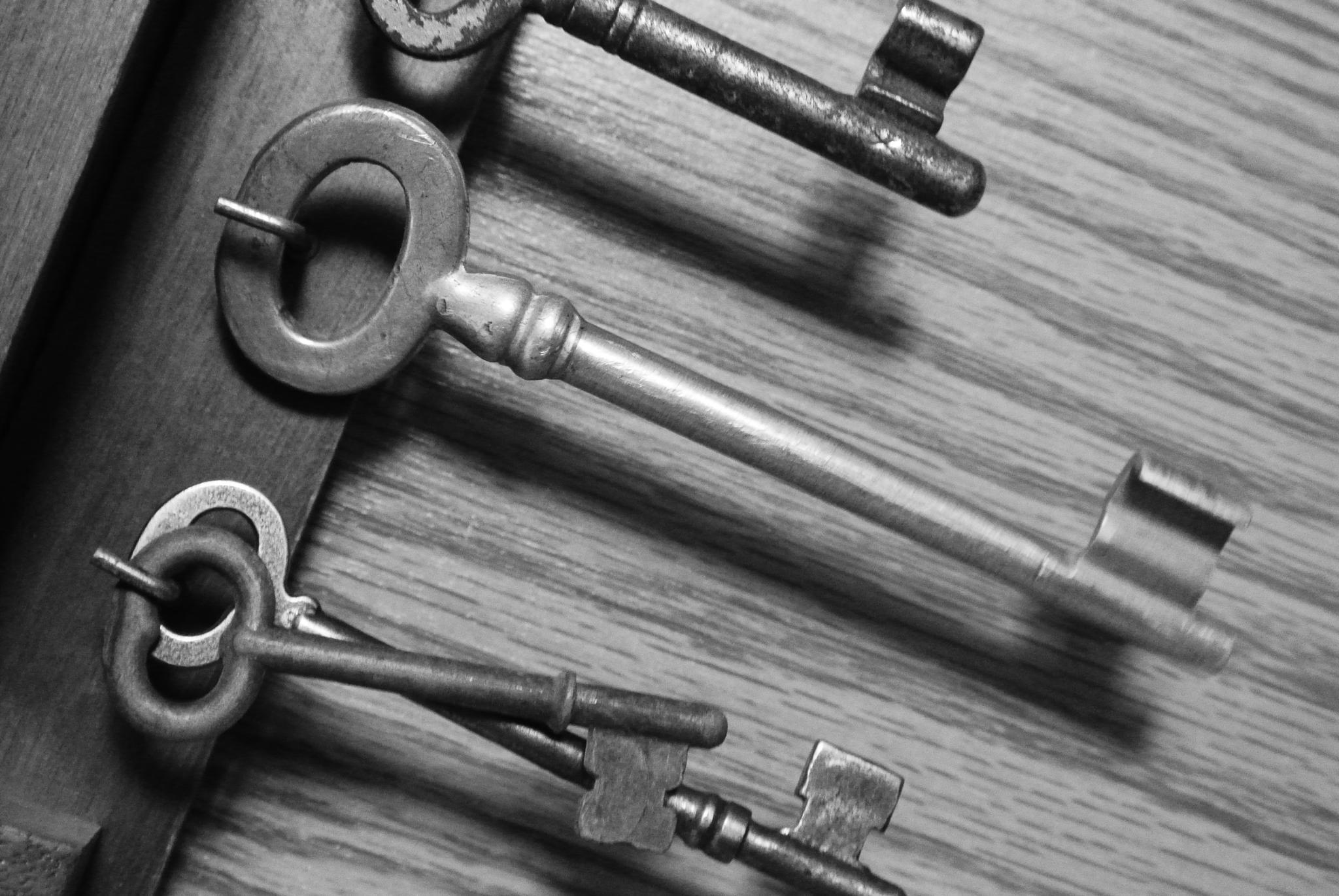 Skeleton Keys by Berly Battle