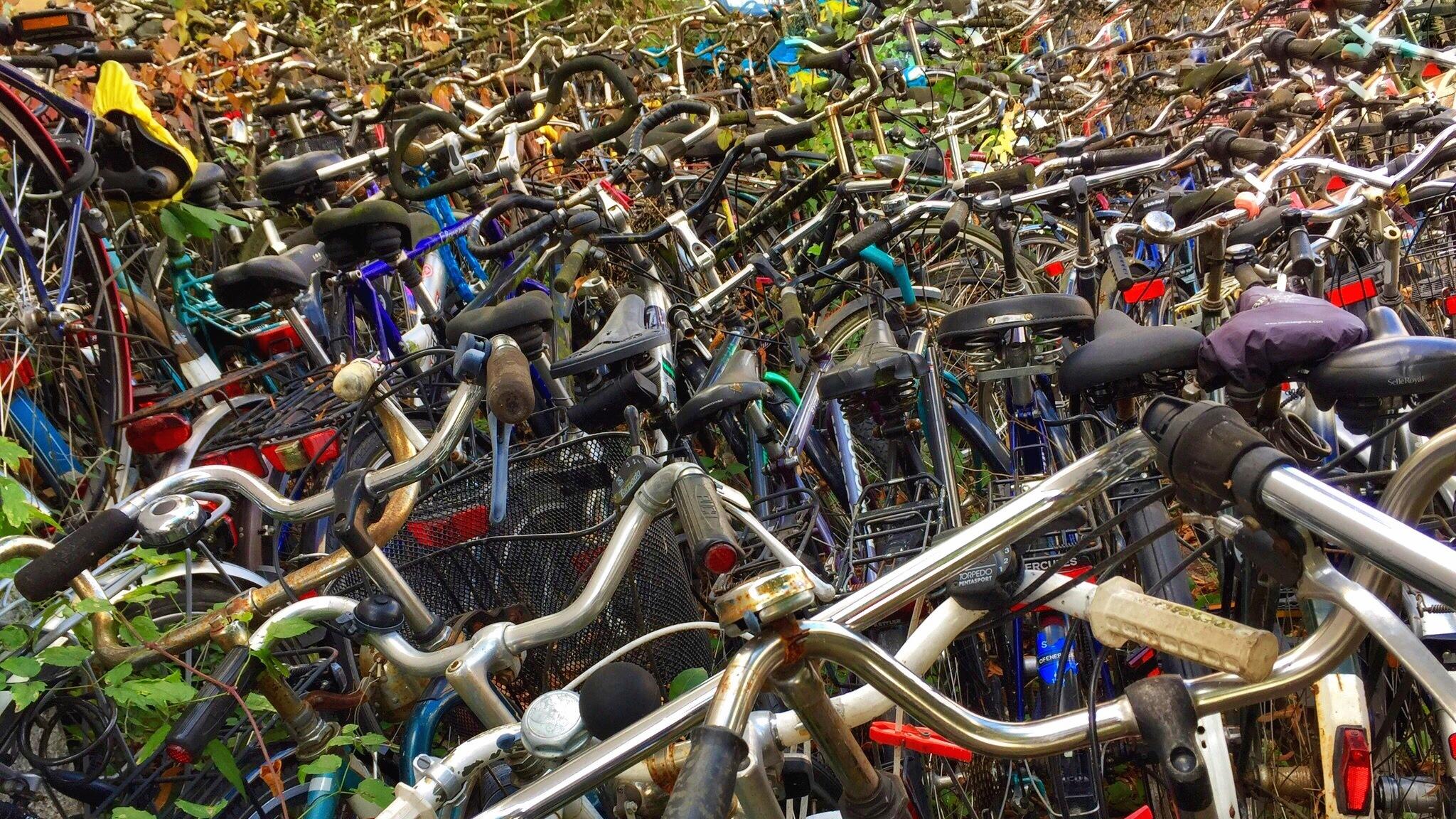 Fahrradfriedhof 3 by Harry Schäfer