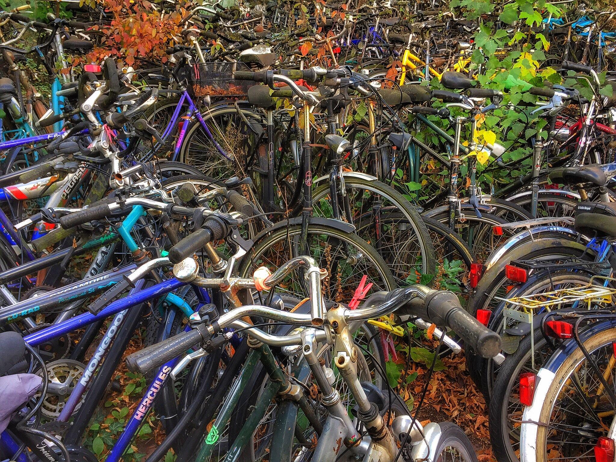 Fahrradfriedhof 2 by Harry Schäfer