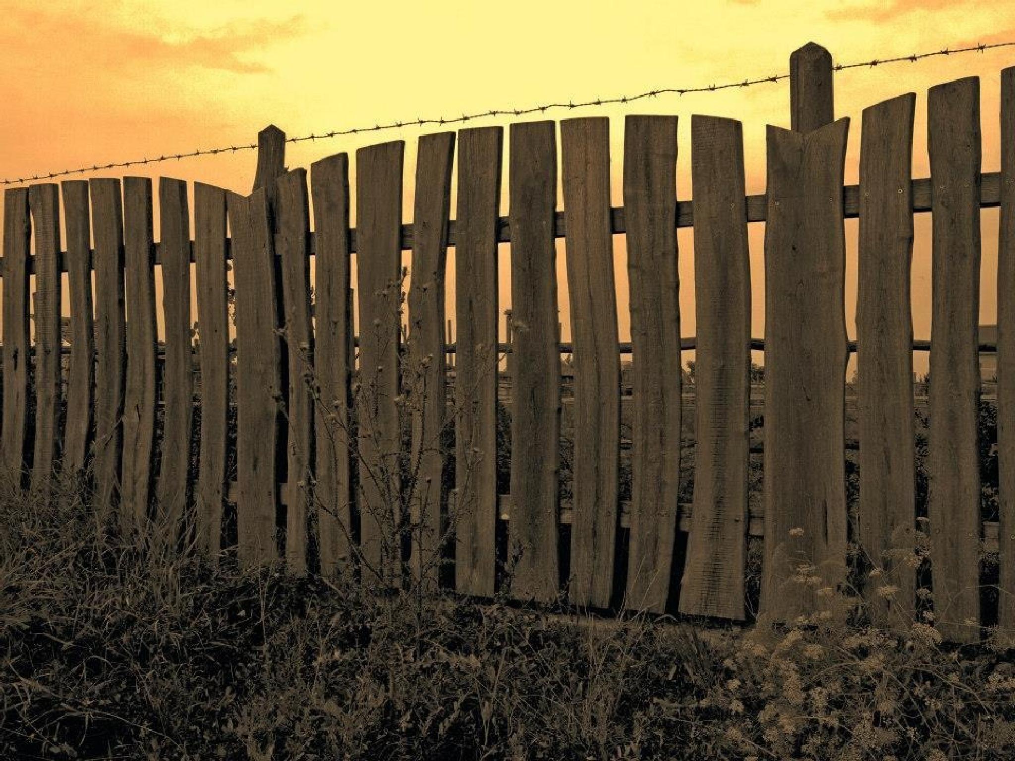 Fence by Kenéz Imre