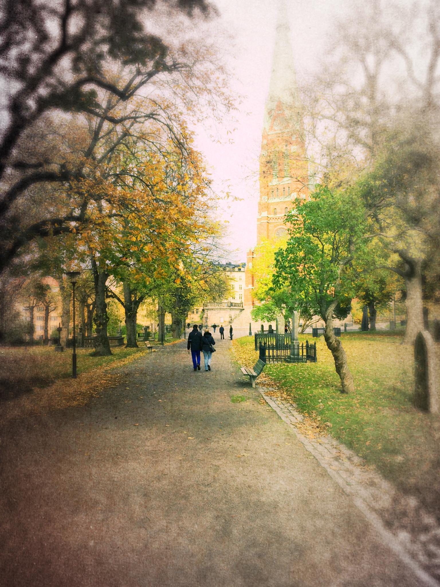 The Walk... by Åke Noring