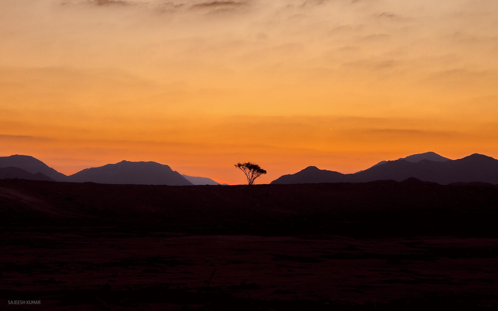 Photo in Landscape #sunrise #tree #silhouette #uae #dubai #photographer #sky #mountains #landscape