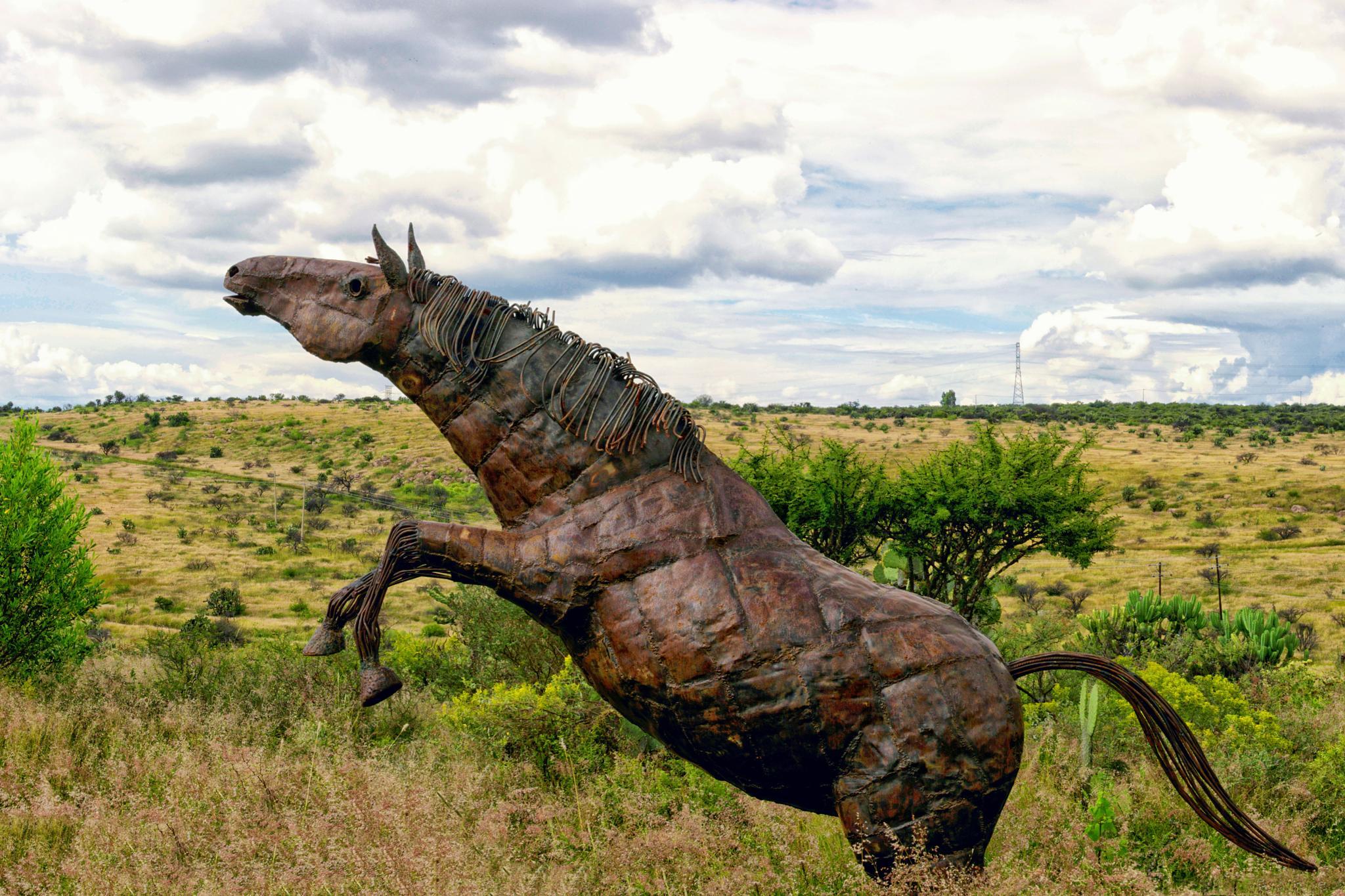 Iron Horse by Jesús Leal Vallejo