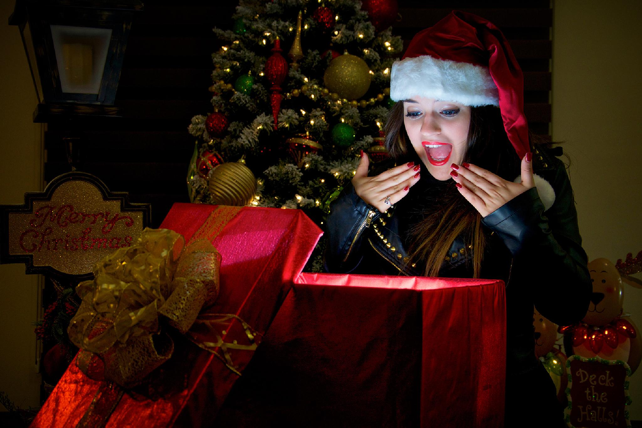 Surprise on Christmas by Jesús Leal Vallejo