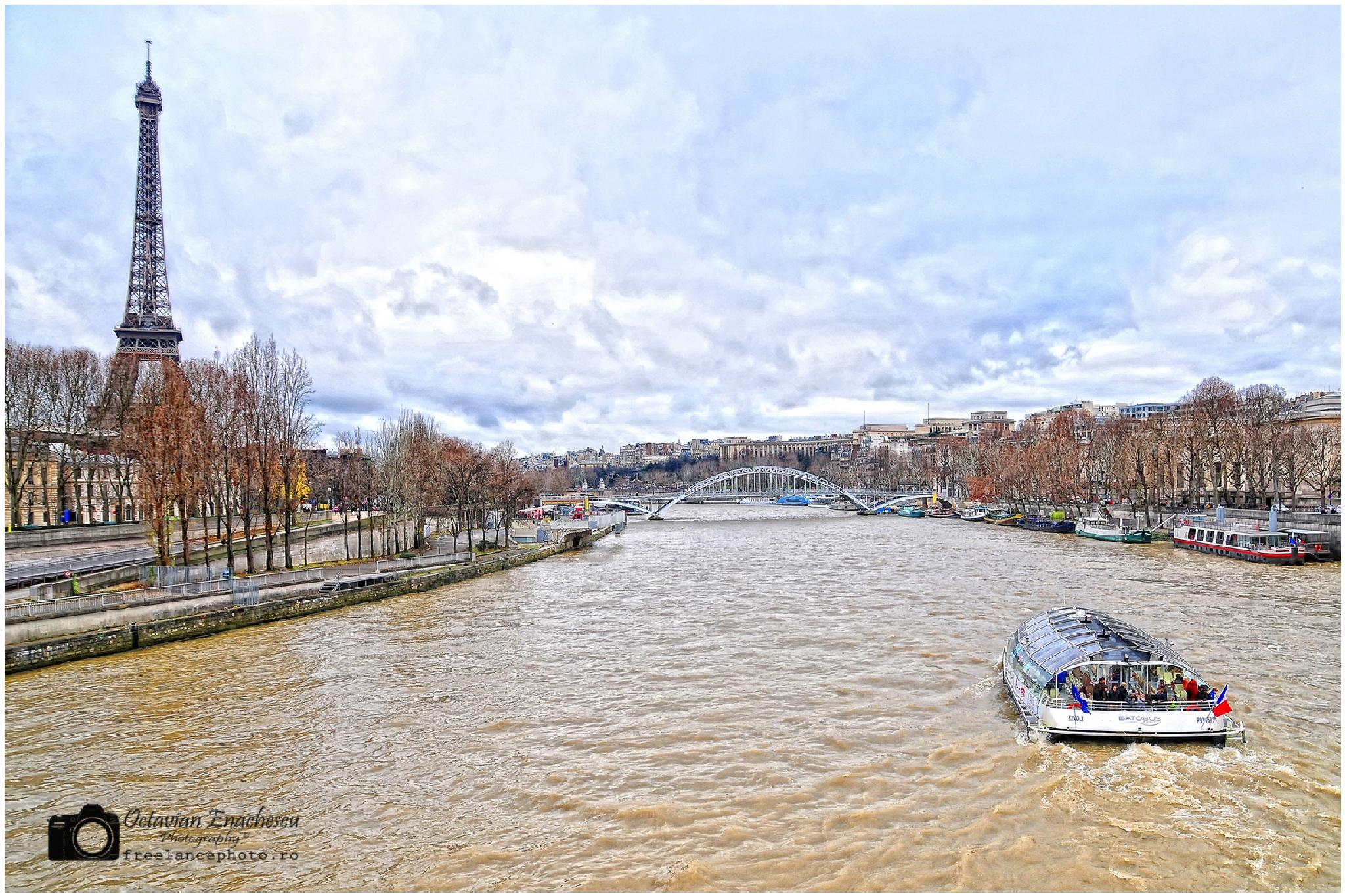 Paris by Octavian Enachescu