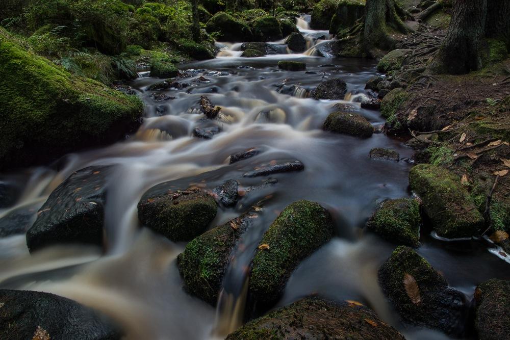 Wyming brook,ll. by Steven Mark Bridgett.