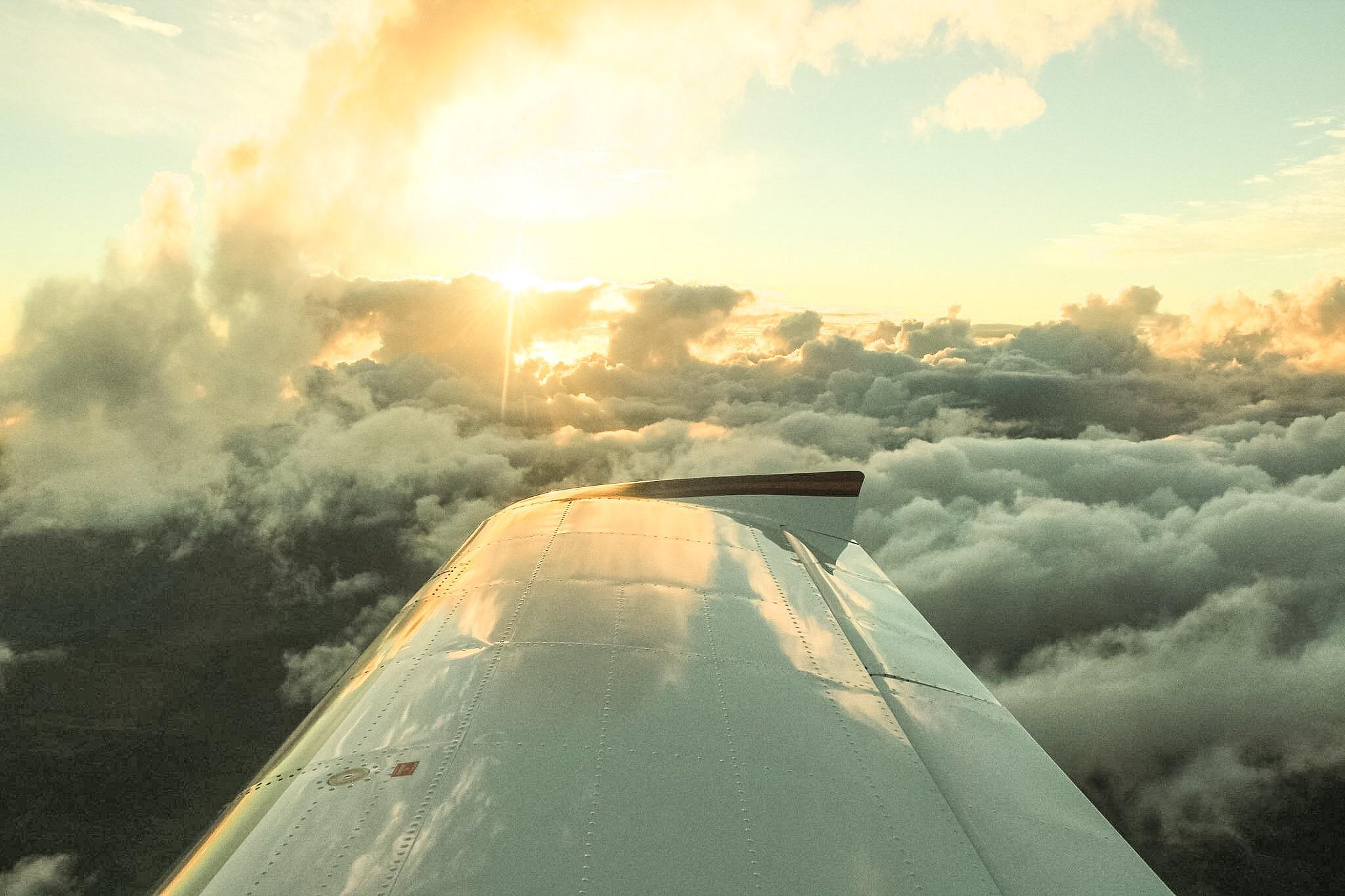 Flying amongst the clouds by ZeeBudgie