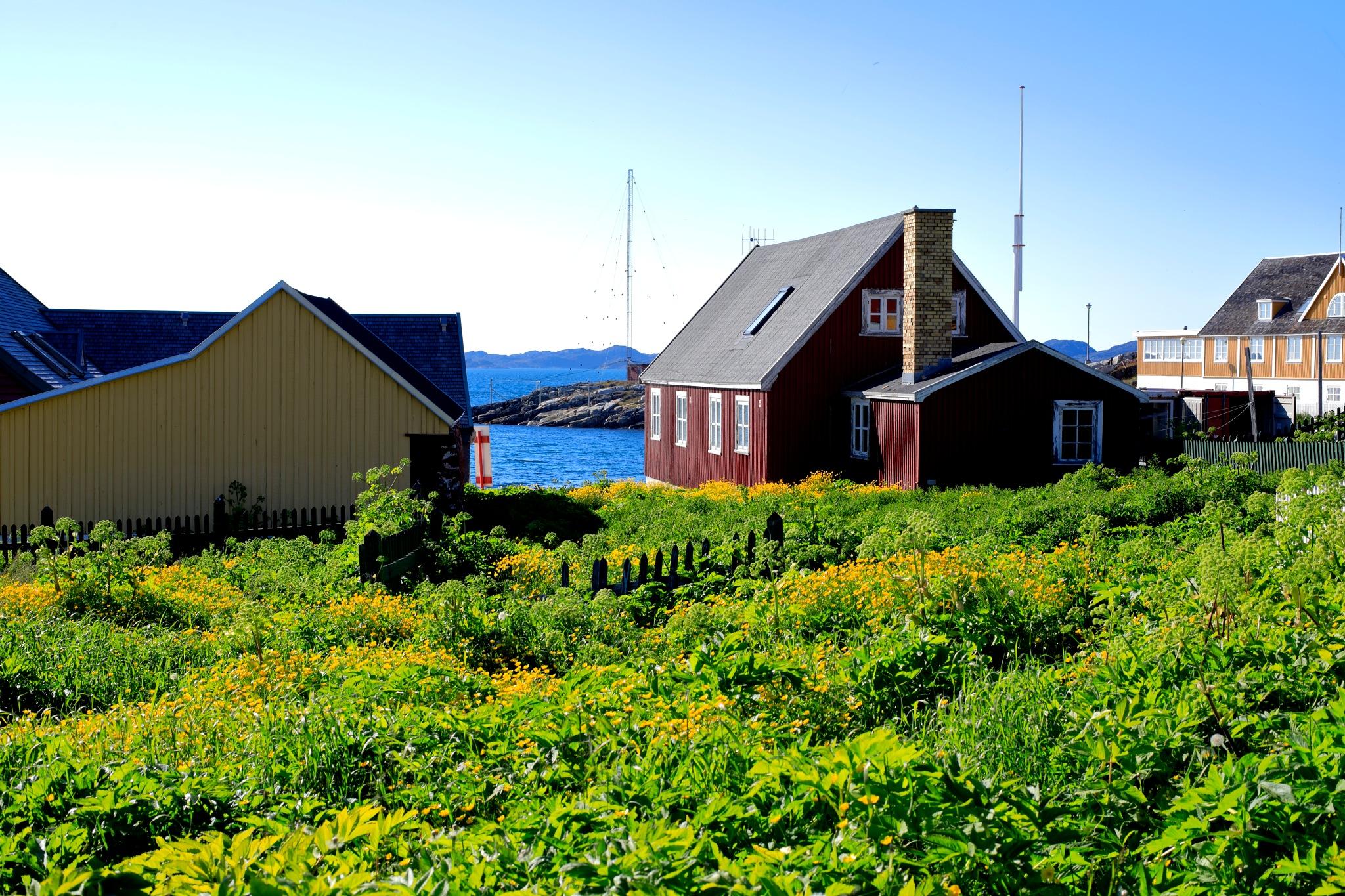 historisk præstegård Nuk  by Tom Augo Lynge