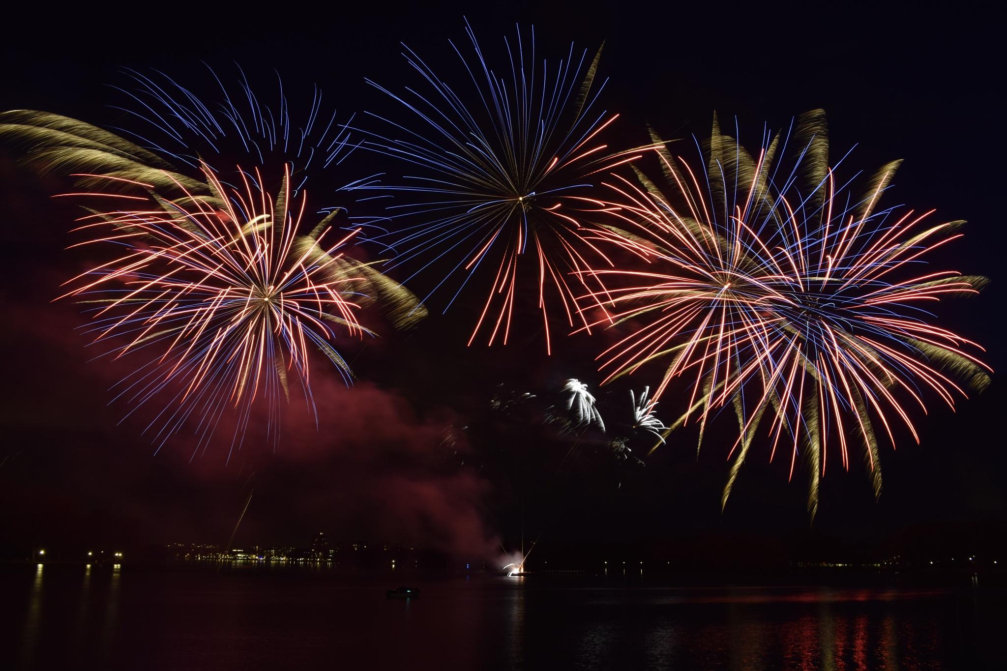Fireworks in Amsterdam by Cynthia Melissa