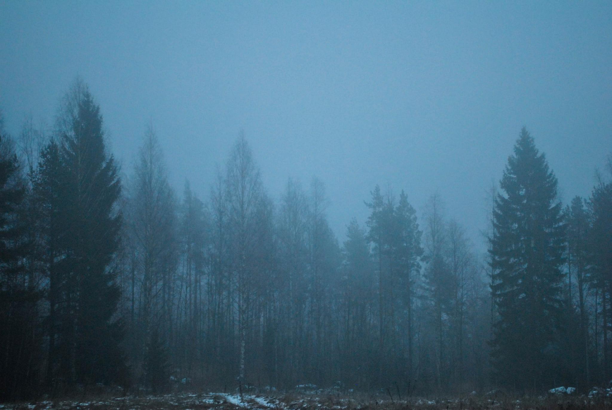 Suomi by Cynthia Melissa