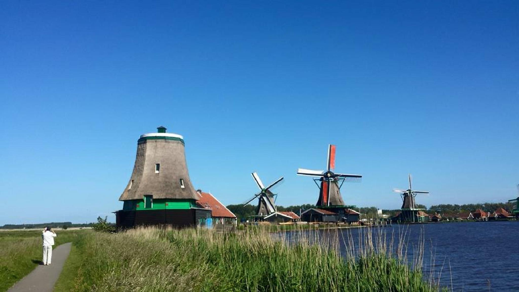 Zaanse Schans- A Windmill village by Cynthia Melissa