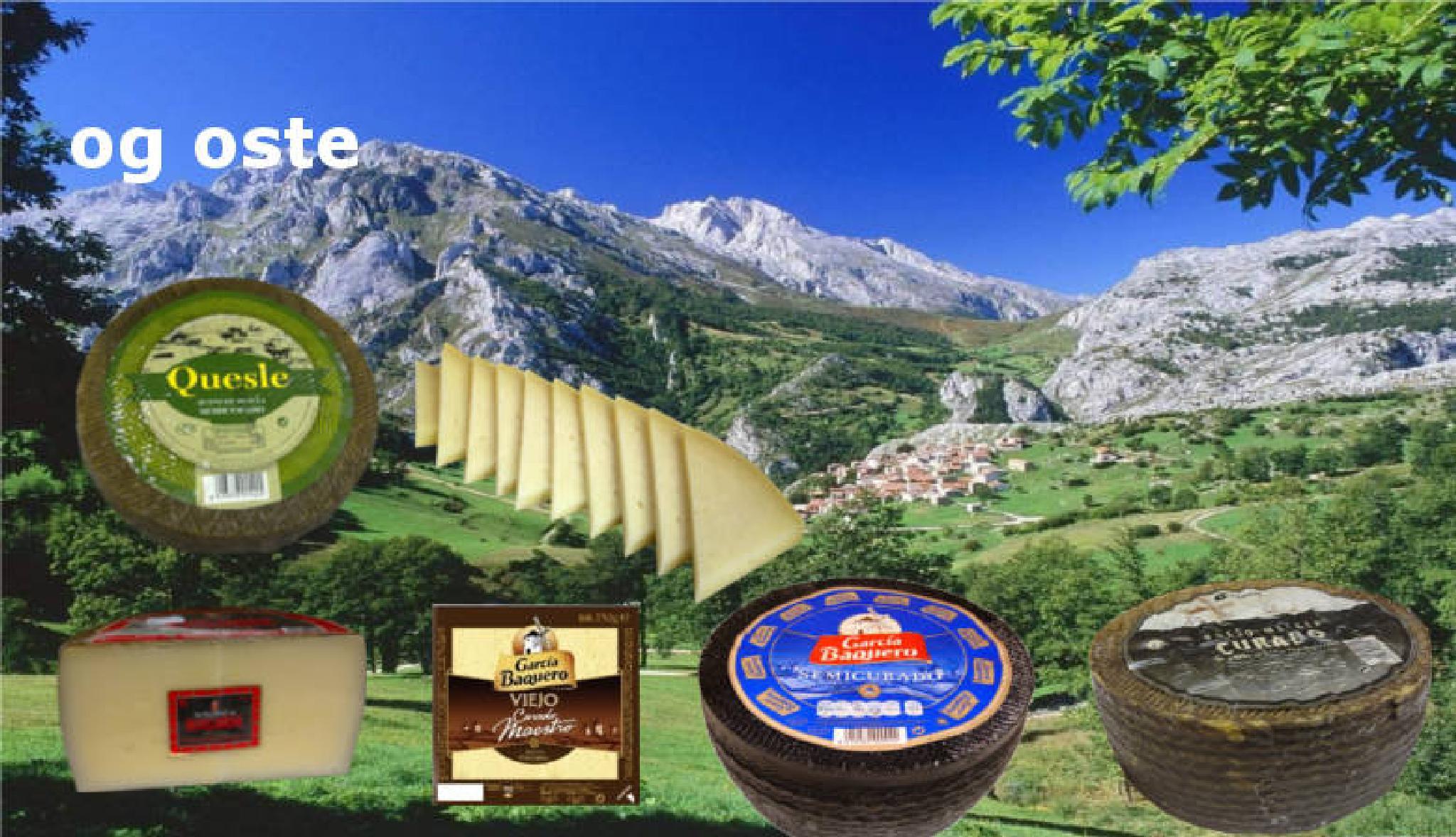 Med disse oste kan du gøre tapas by espanaencasada
