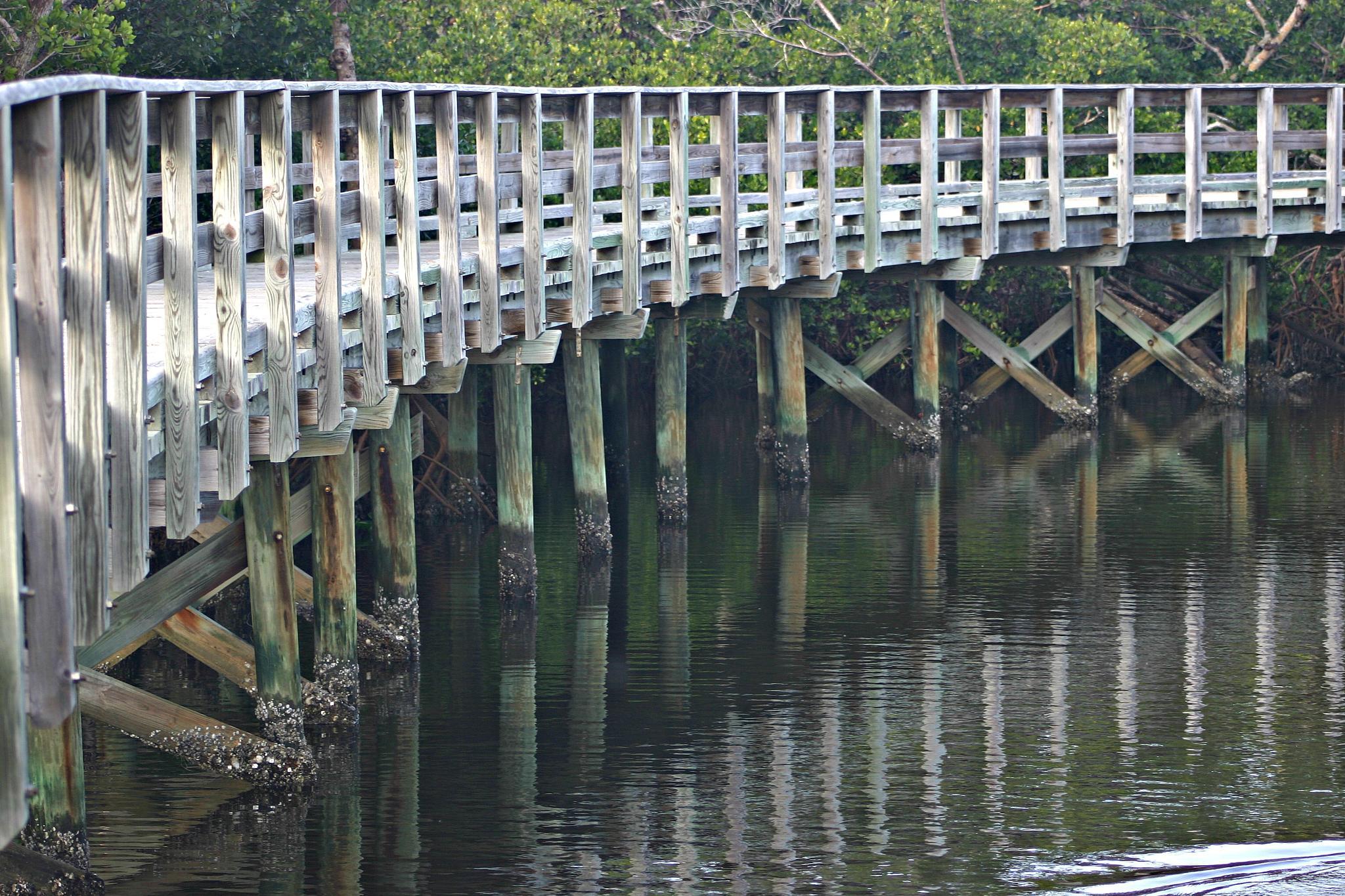 WALK BRIDGE 3 by bechcomber444