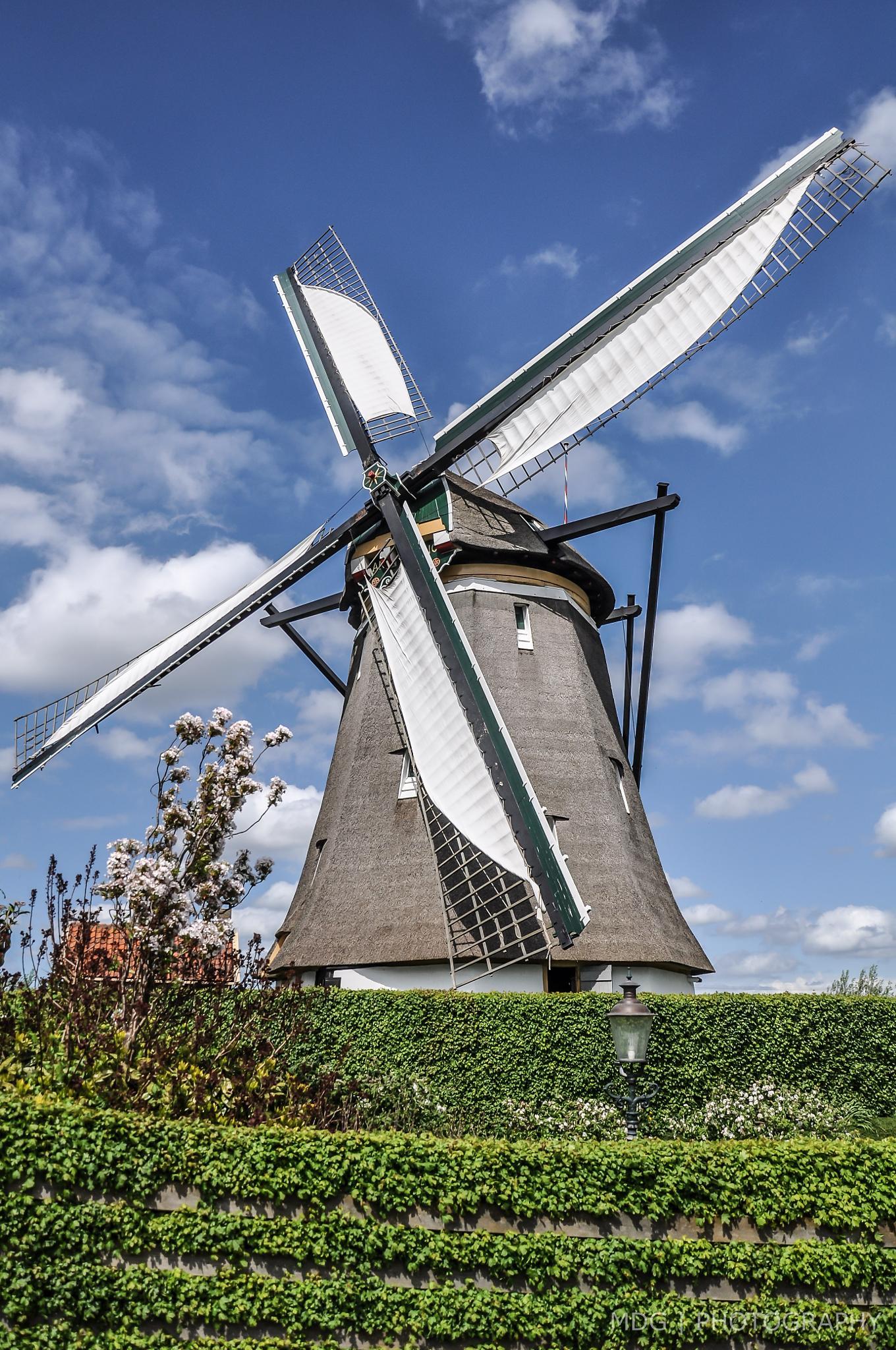 Windmill by Marco de Graaff