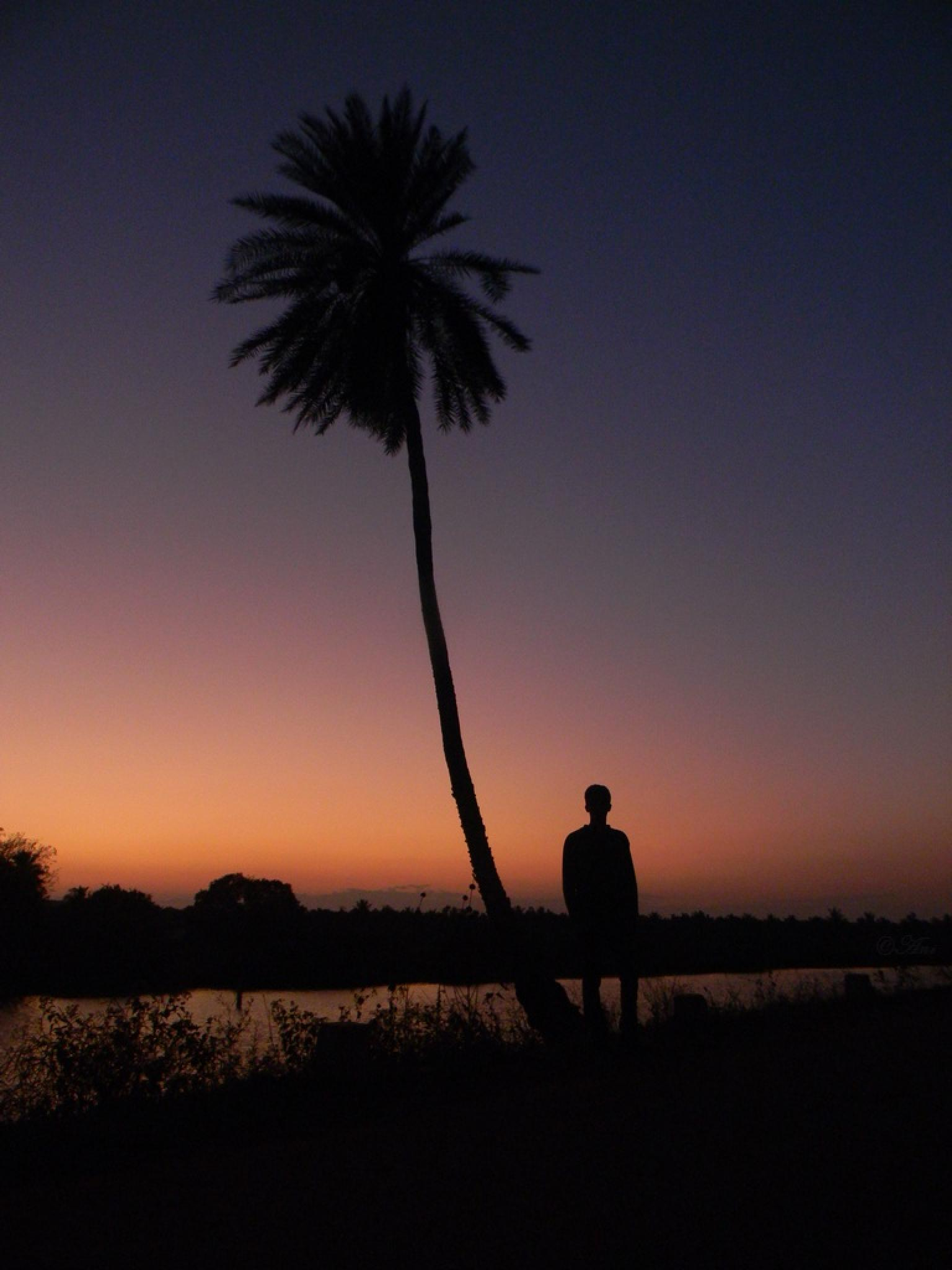 Lonely by aniruddhakatipalla
