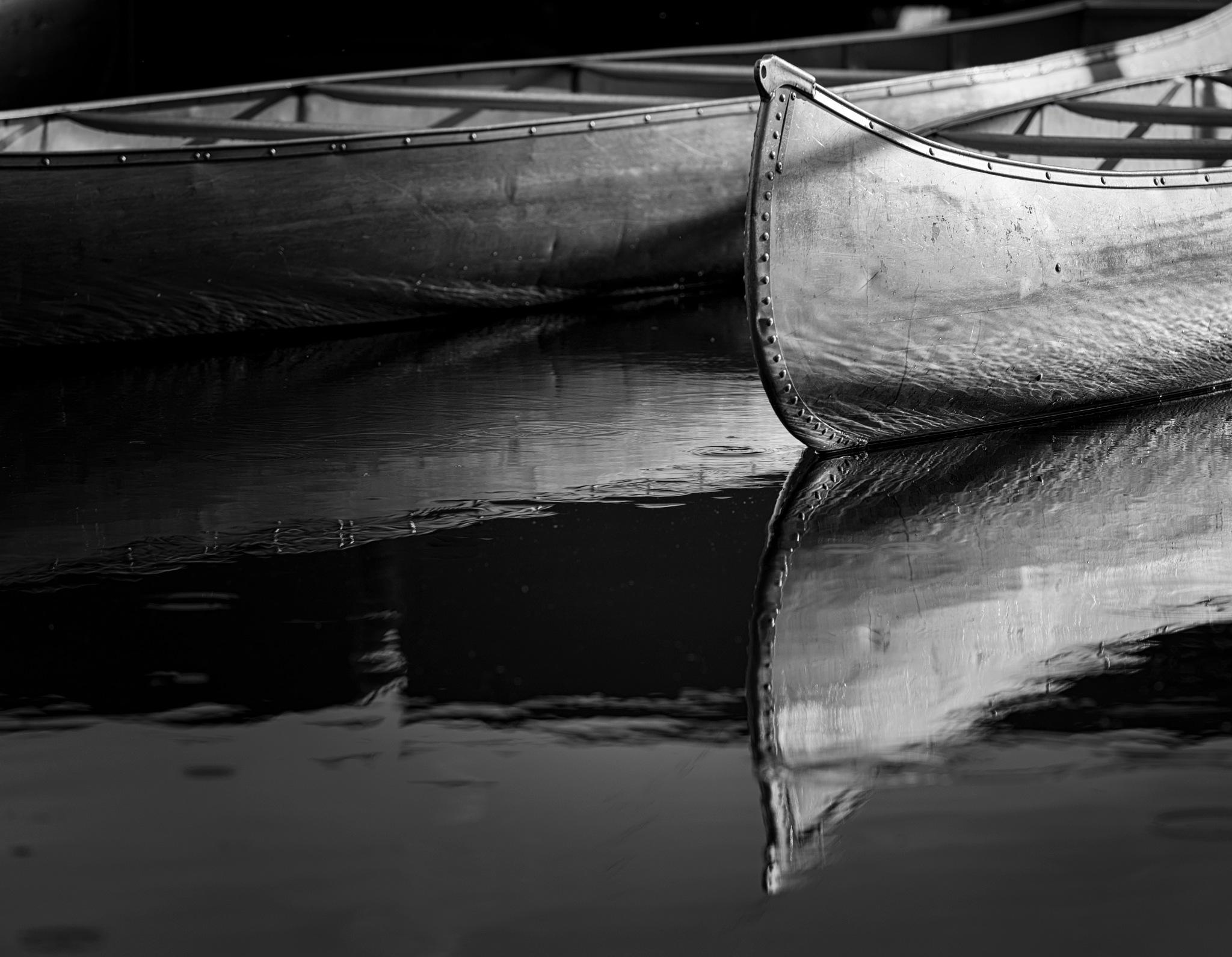 reflections in b&w by Michael Scott