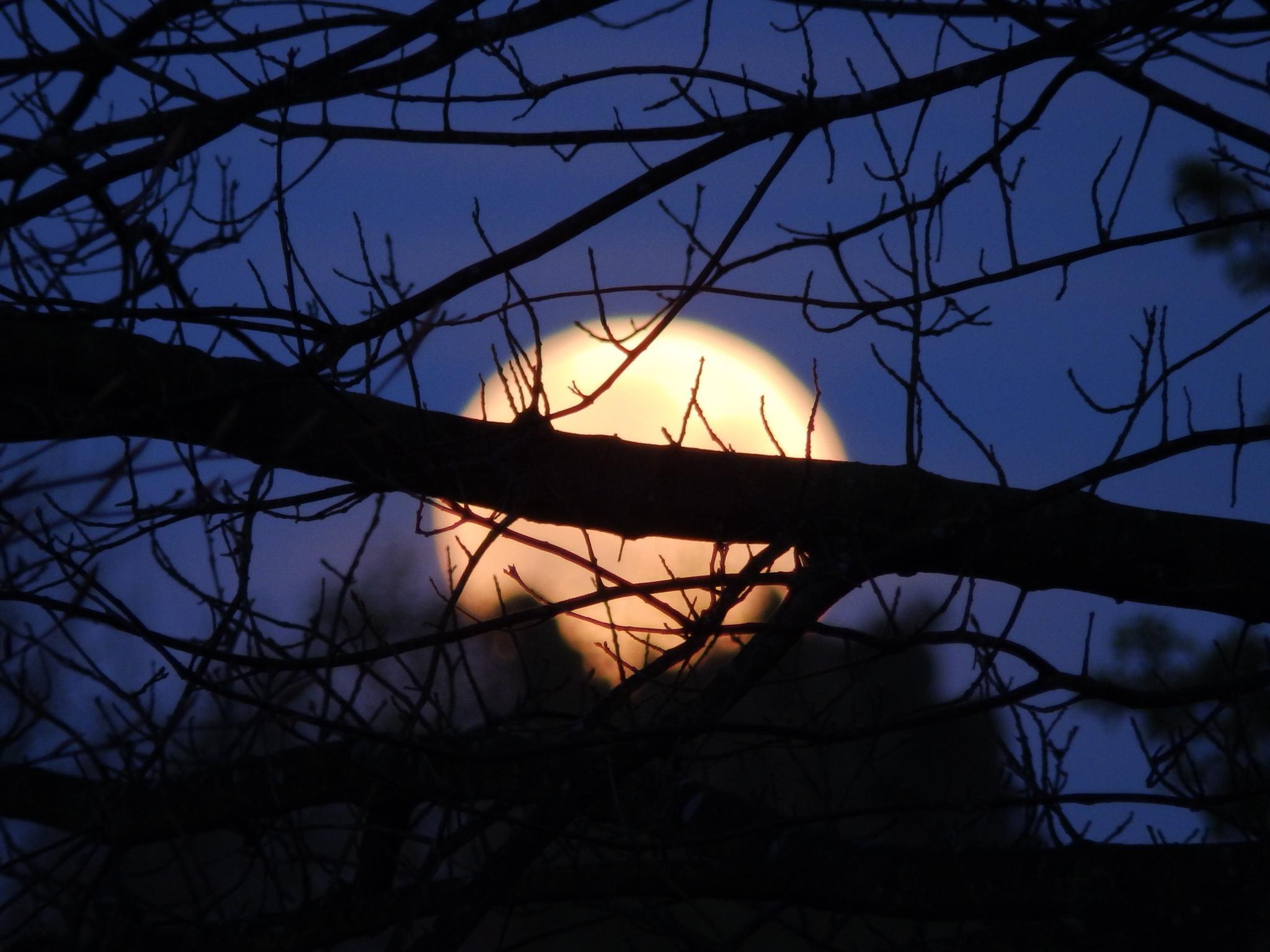moonset by slawomir.leonarcik