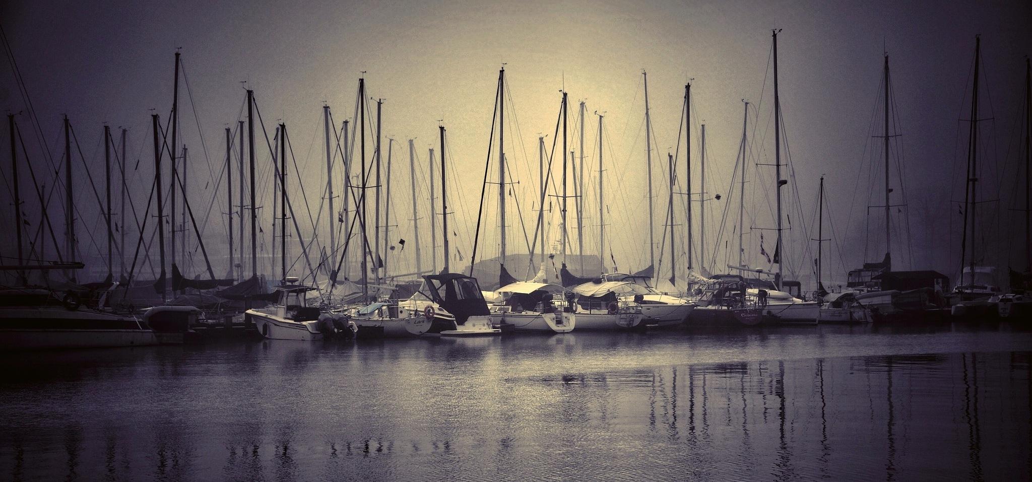 boats plus by JOSEPH MAZZUCCO