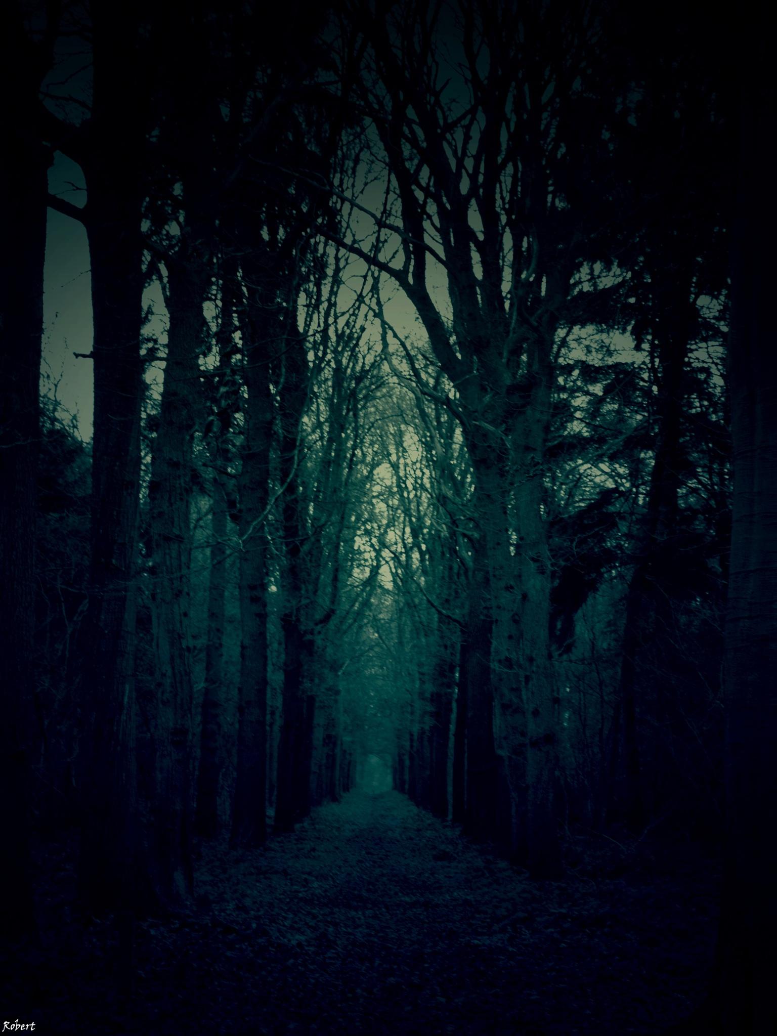 Nightmare.... by Robert